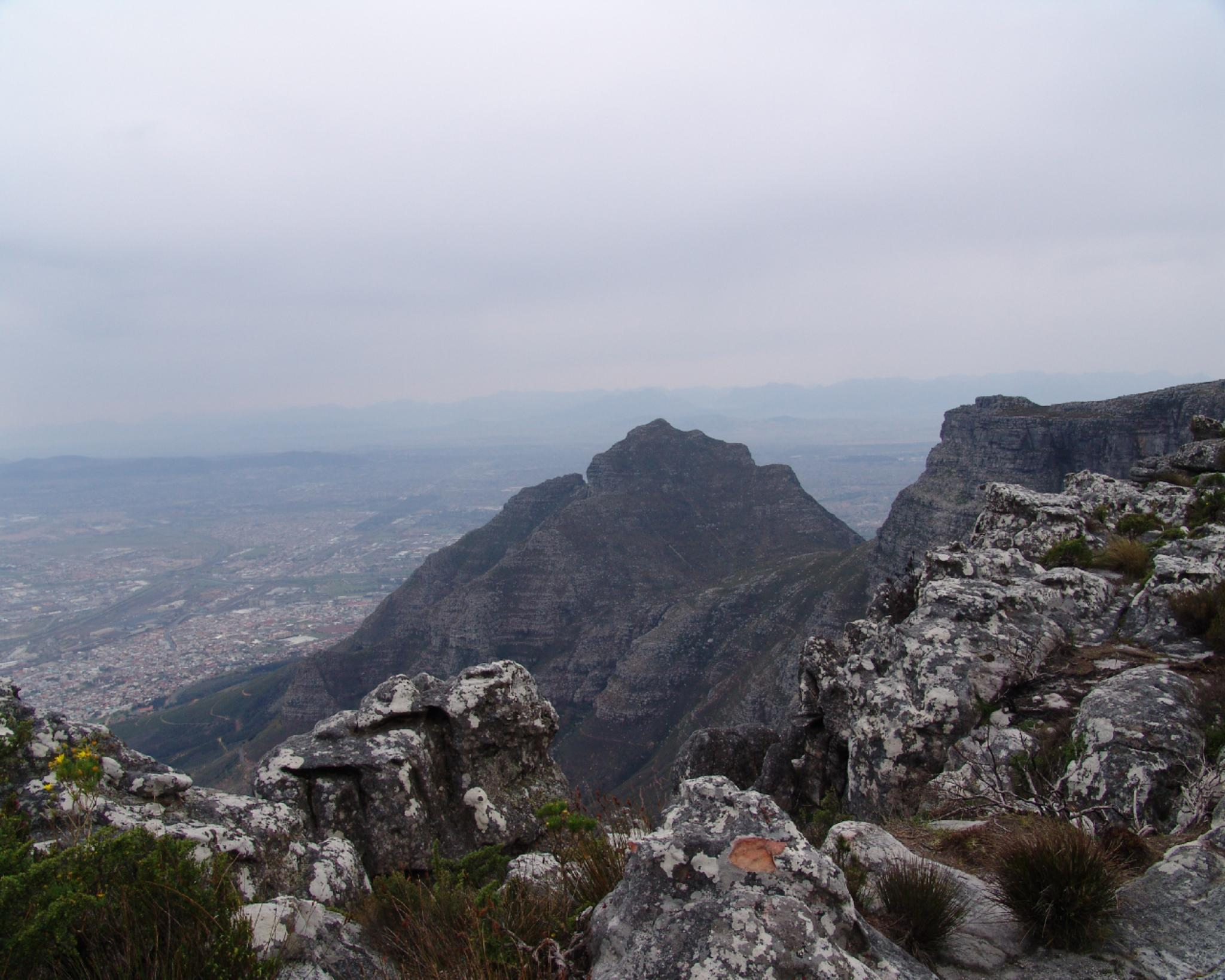 View from table mountain by Bogfrog
