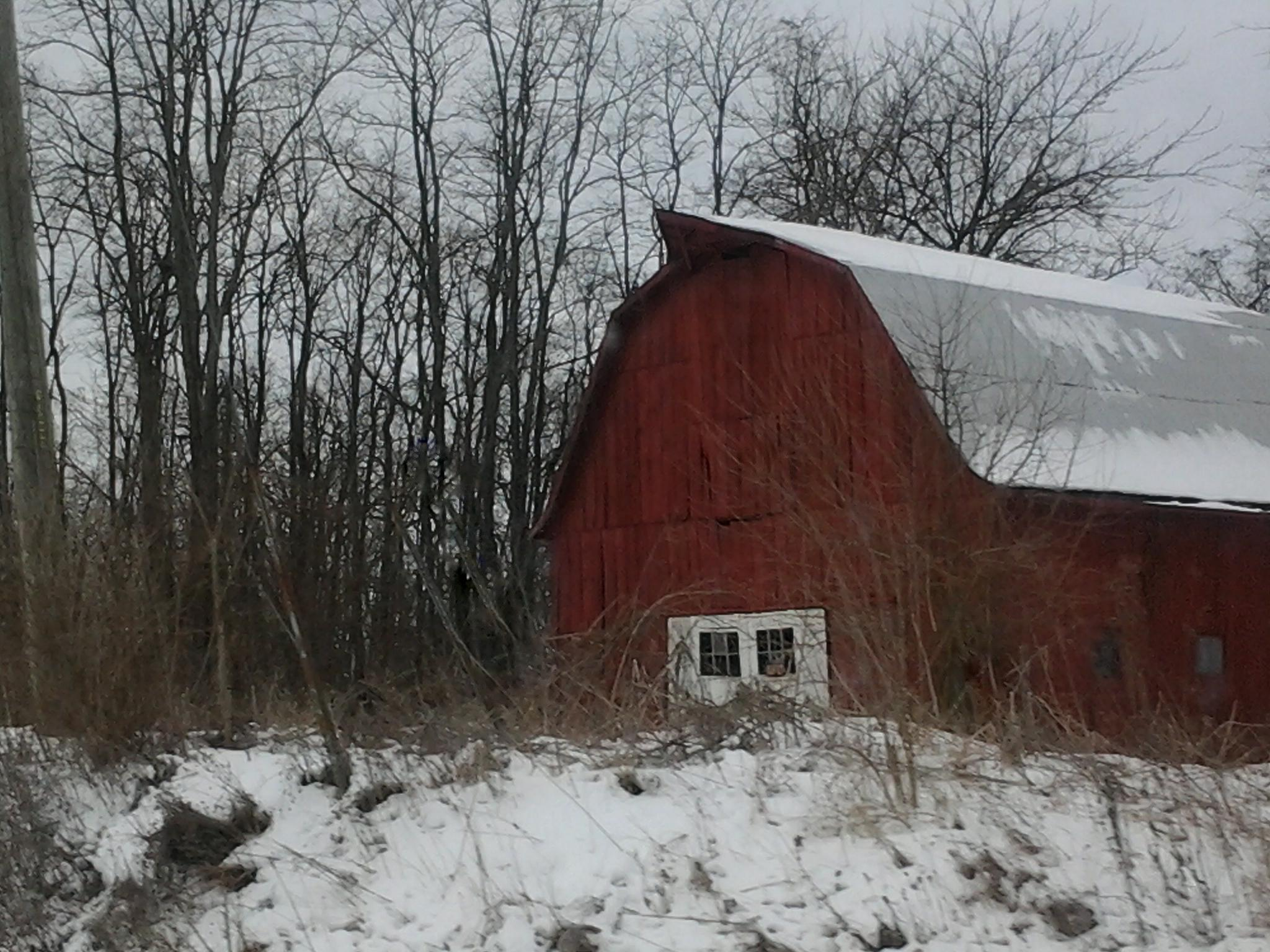 Red Barn by Kat