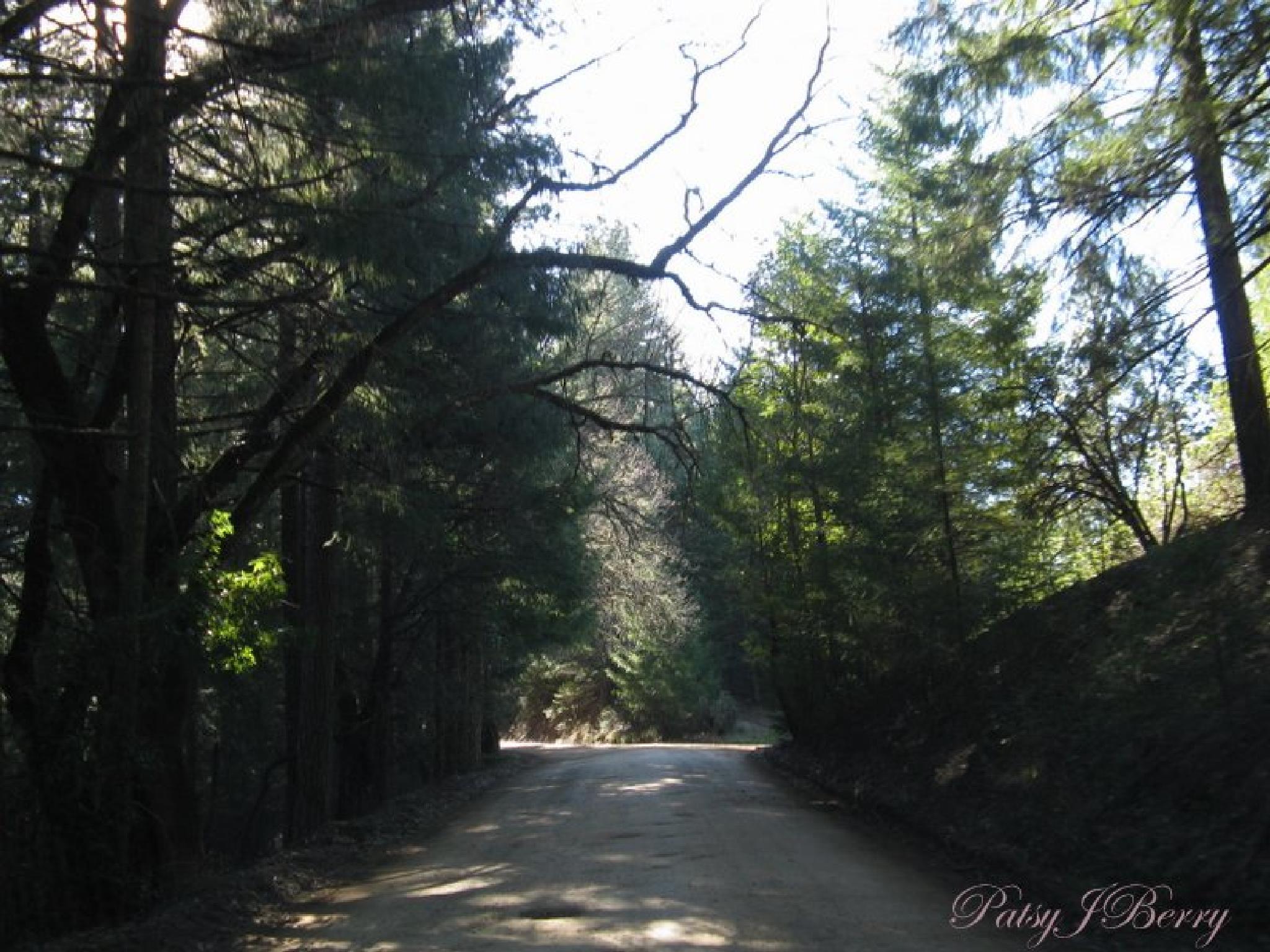 California backroads by Kat