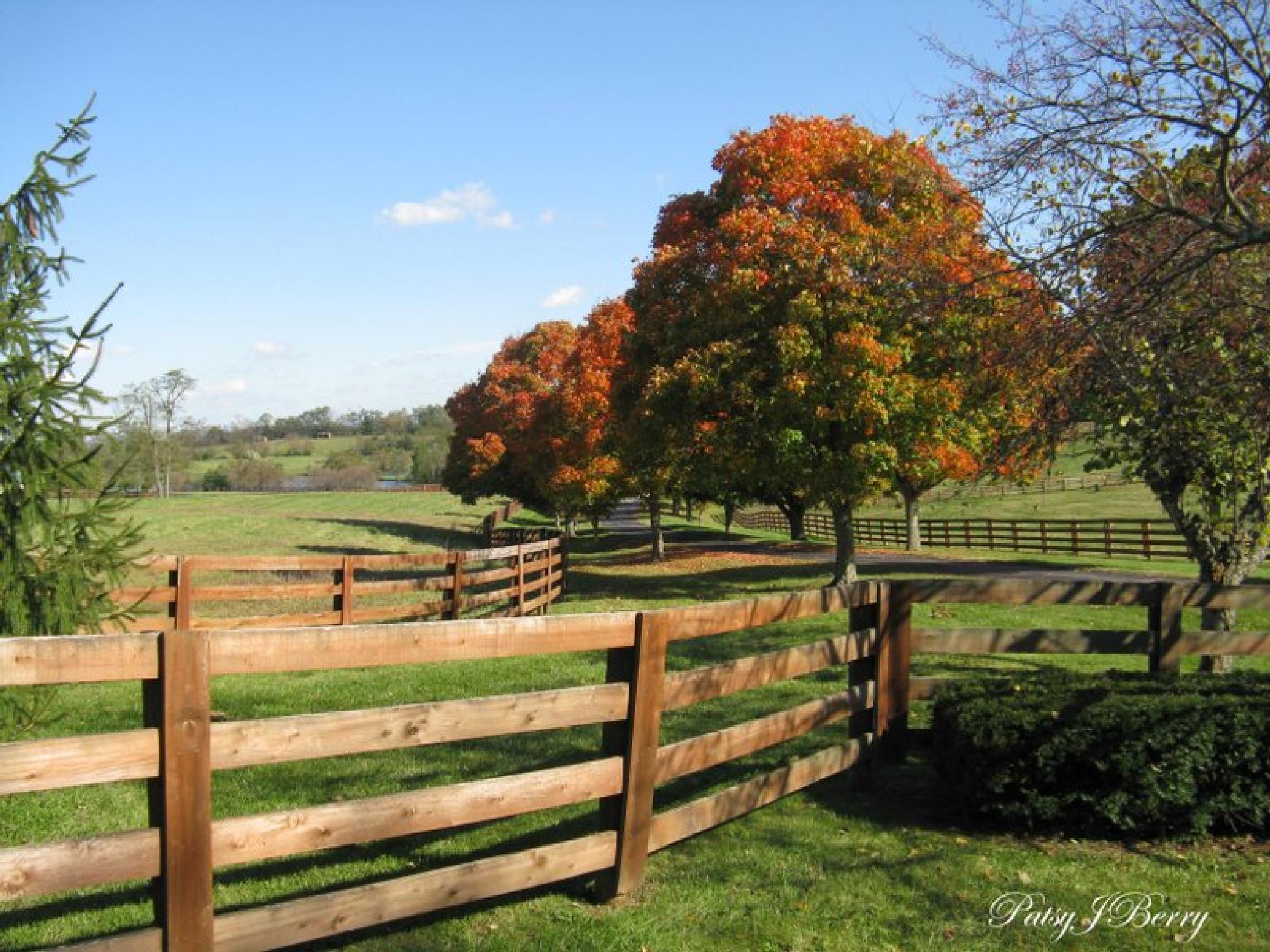 Fall on a Central Kentucky Farm by Kat