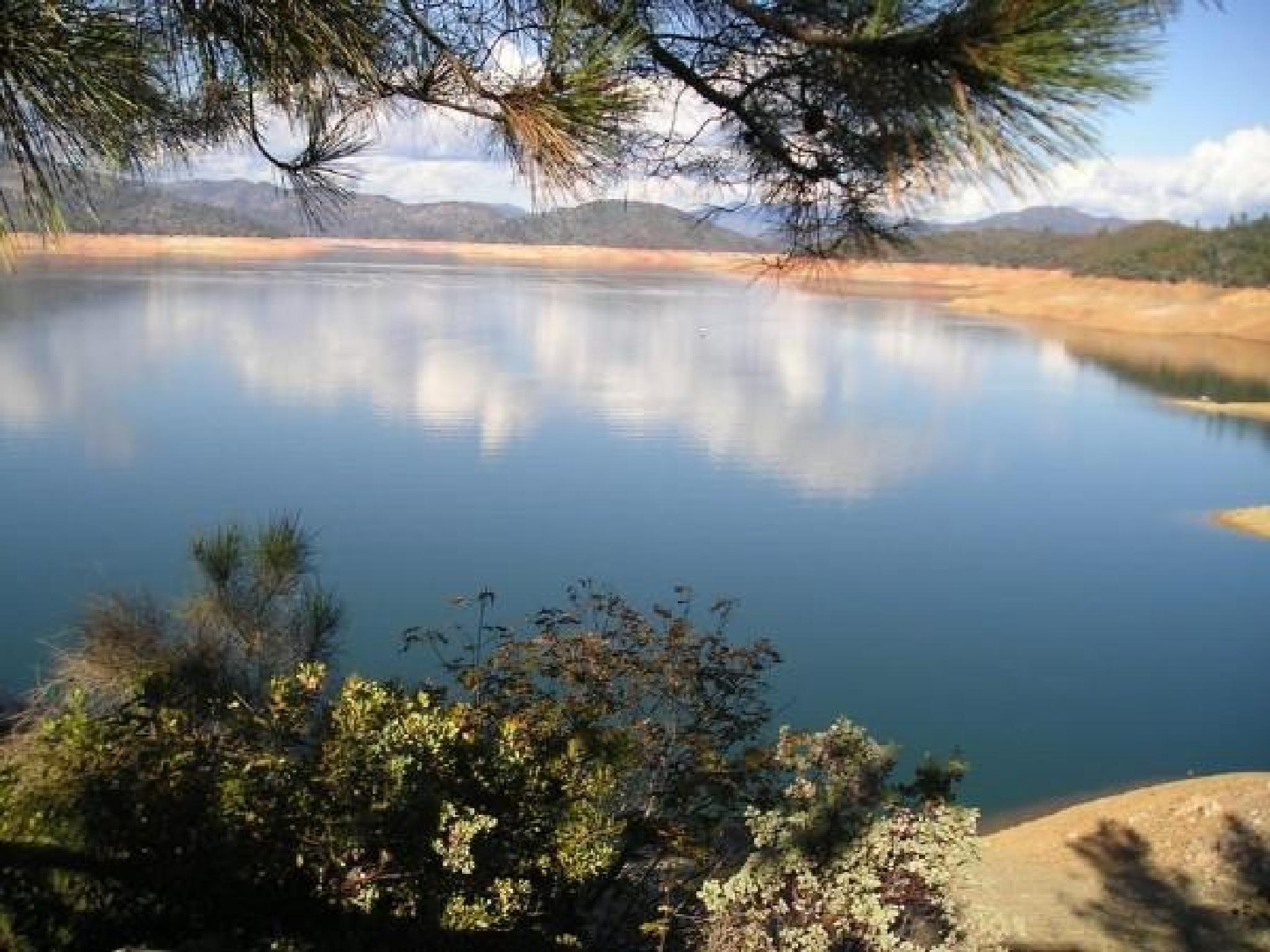Shasta Dam by ronnie.lohi