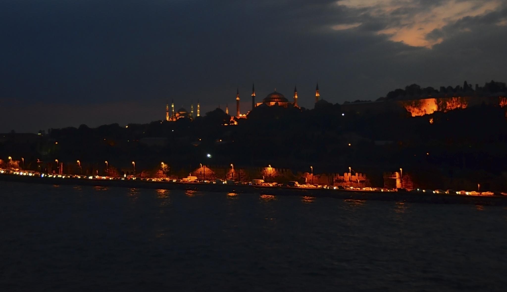 Istanbul. Night by Merle Layden