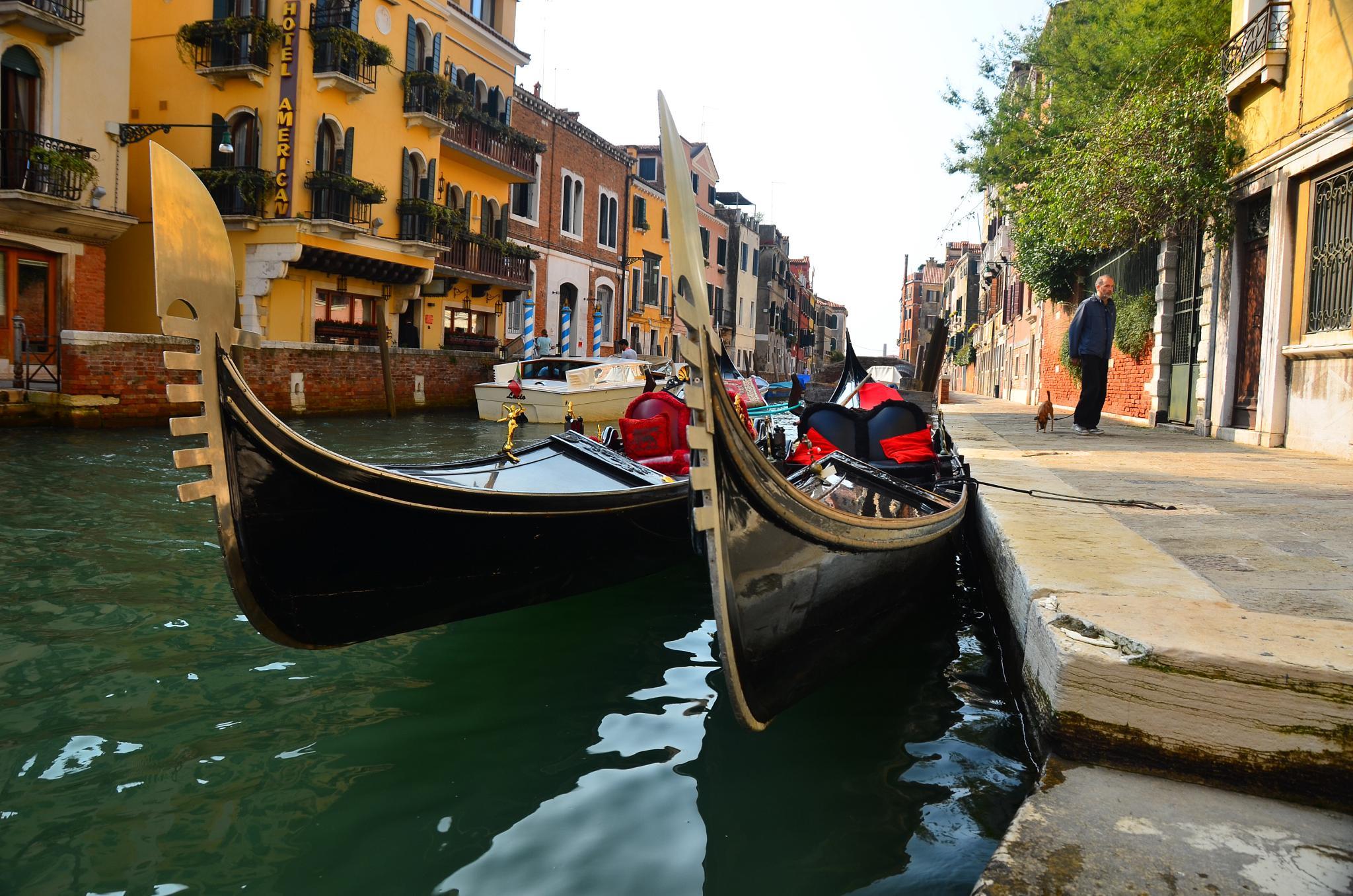 Gondolas by Merle Layden