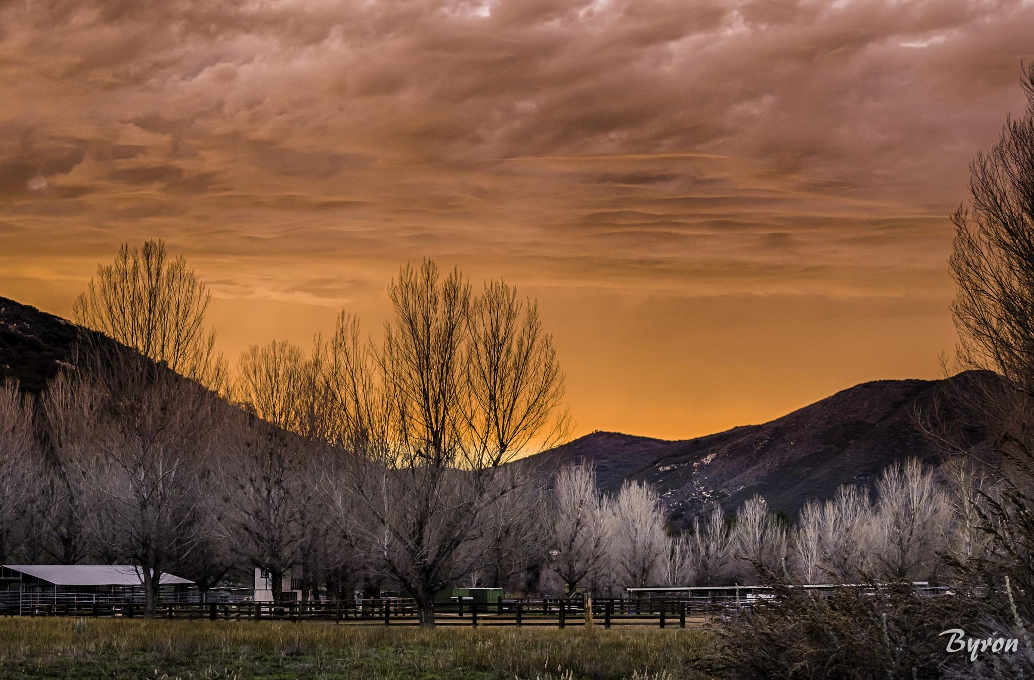 Mountain Horse Ranch by CROFT Photography