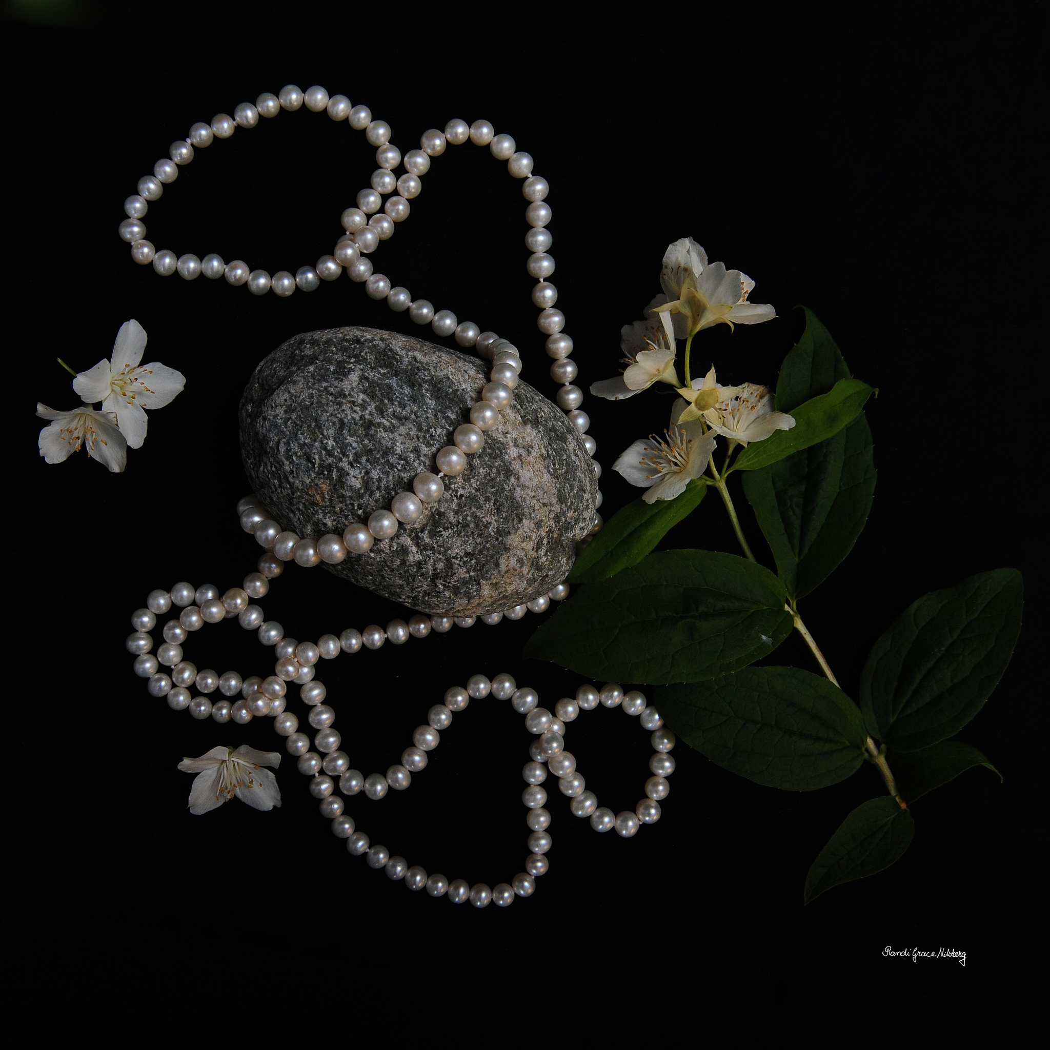 Jasmine and Pearls by Randi Grace Nilsberg
