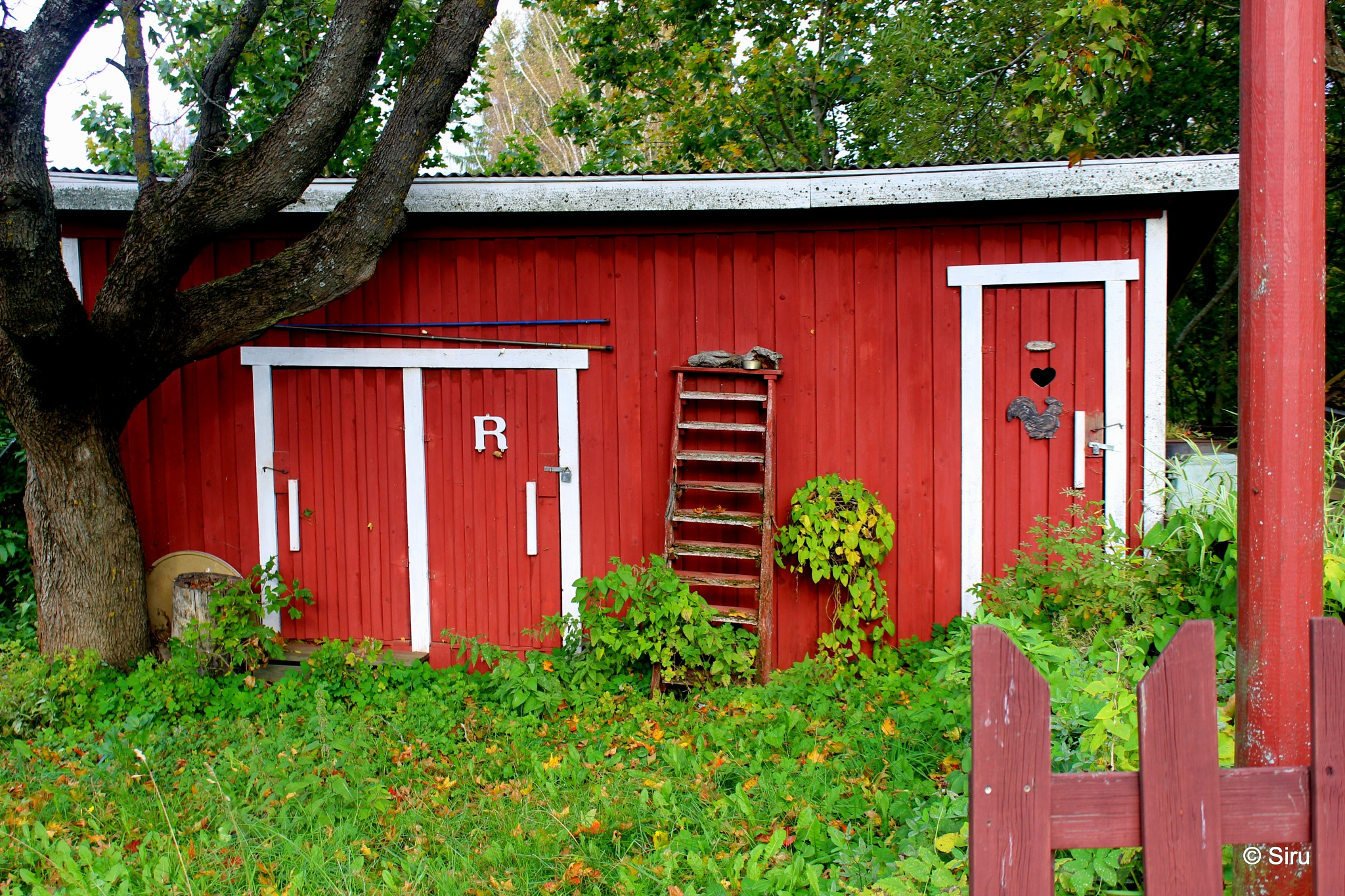 some nice and very old toilet by siru tuominen