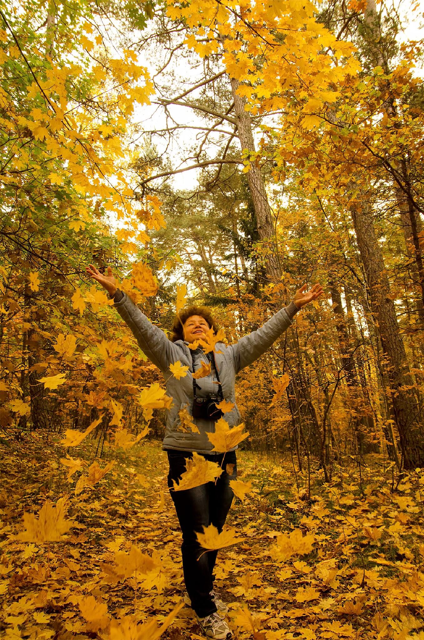 Autumn... by Daiva Cirtautė