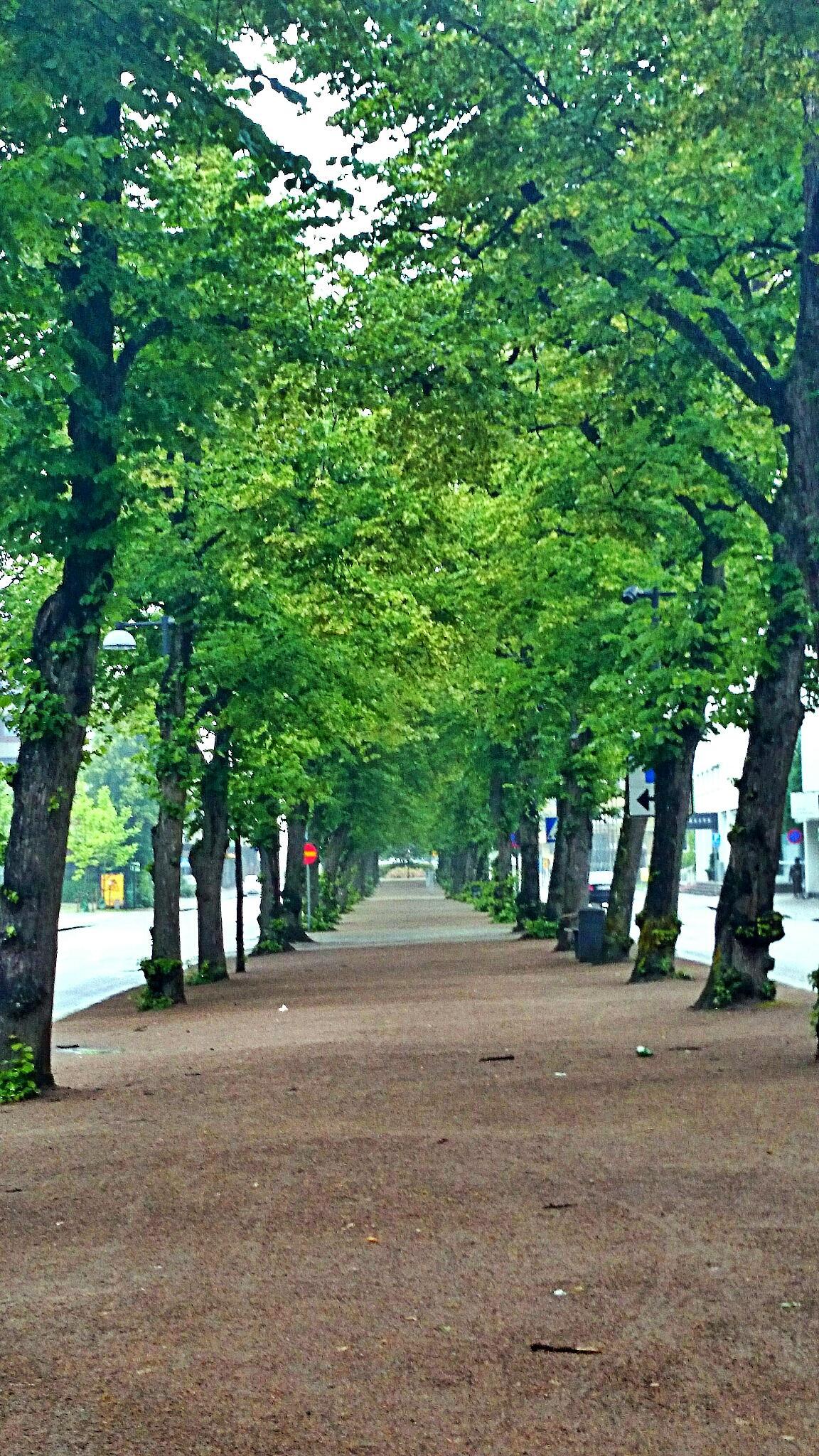 Växjö alley  by Sherlina