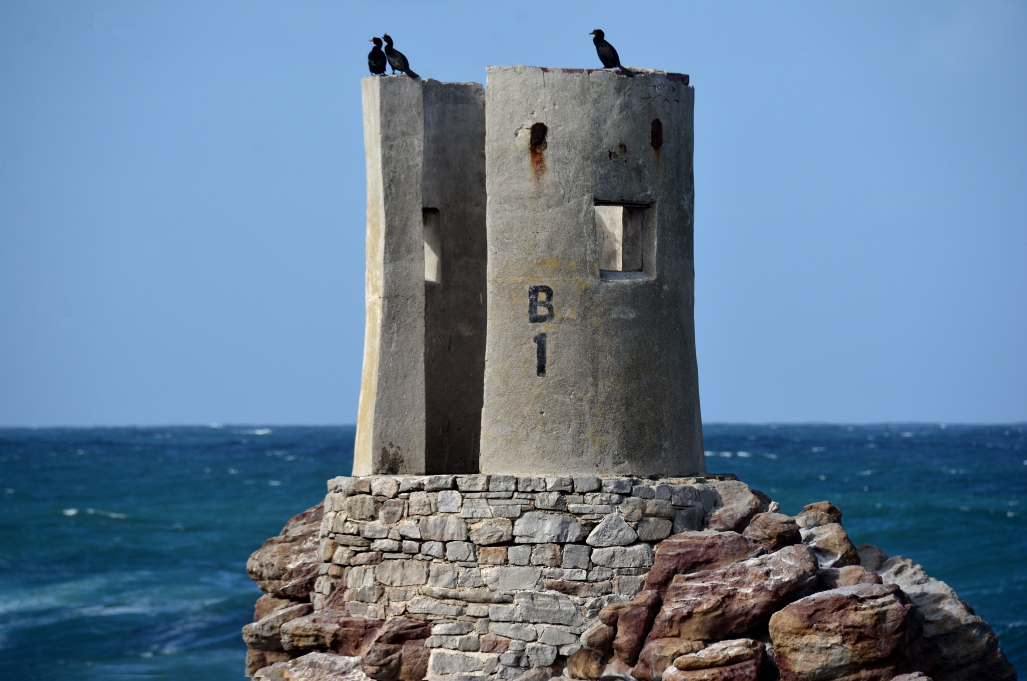 Photo in Travel #travel #south africa #cape town #betty's bay #cormorans #landscape #ocean #nature #bird #wildlife