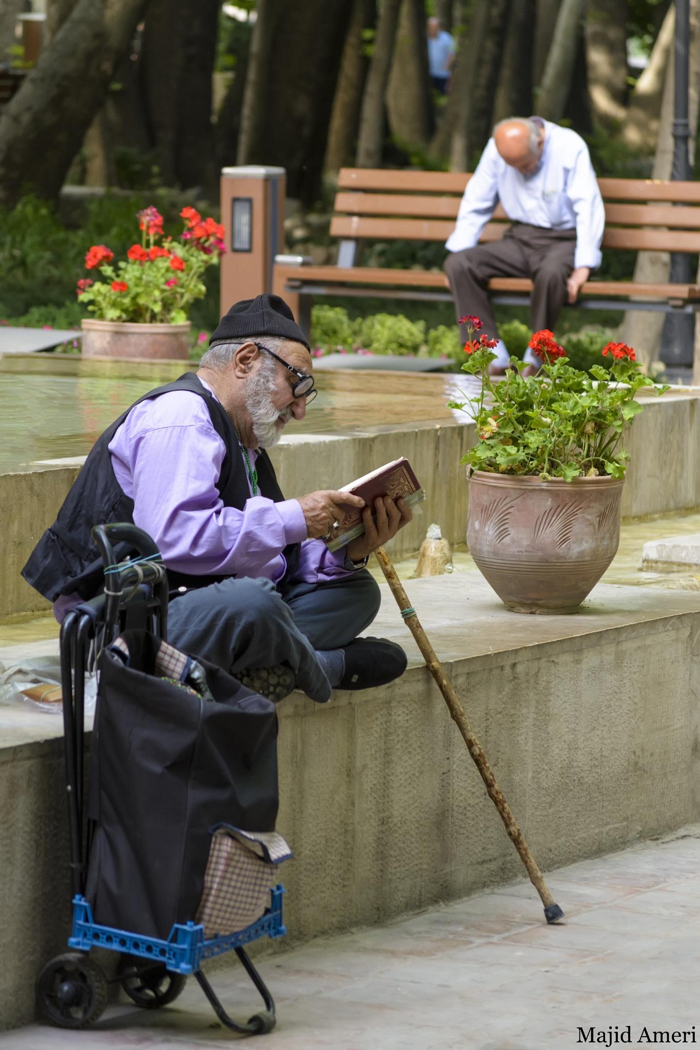 old man by Majid.Ameri