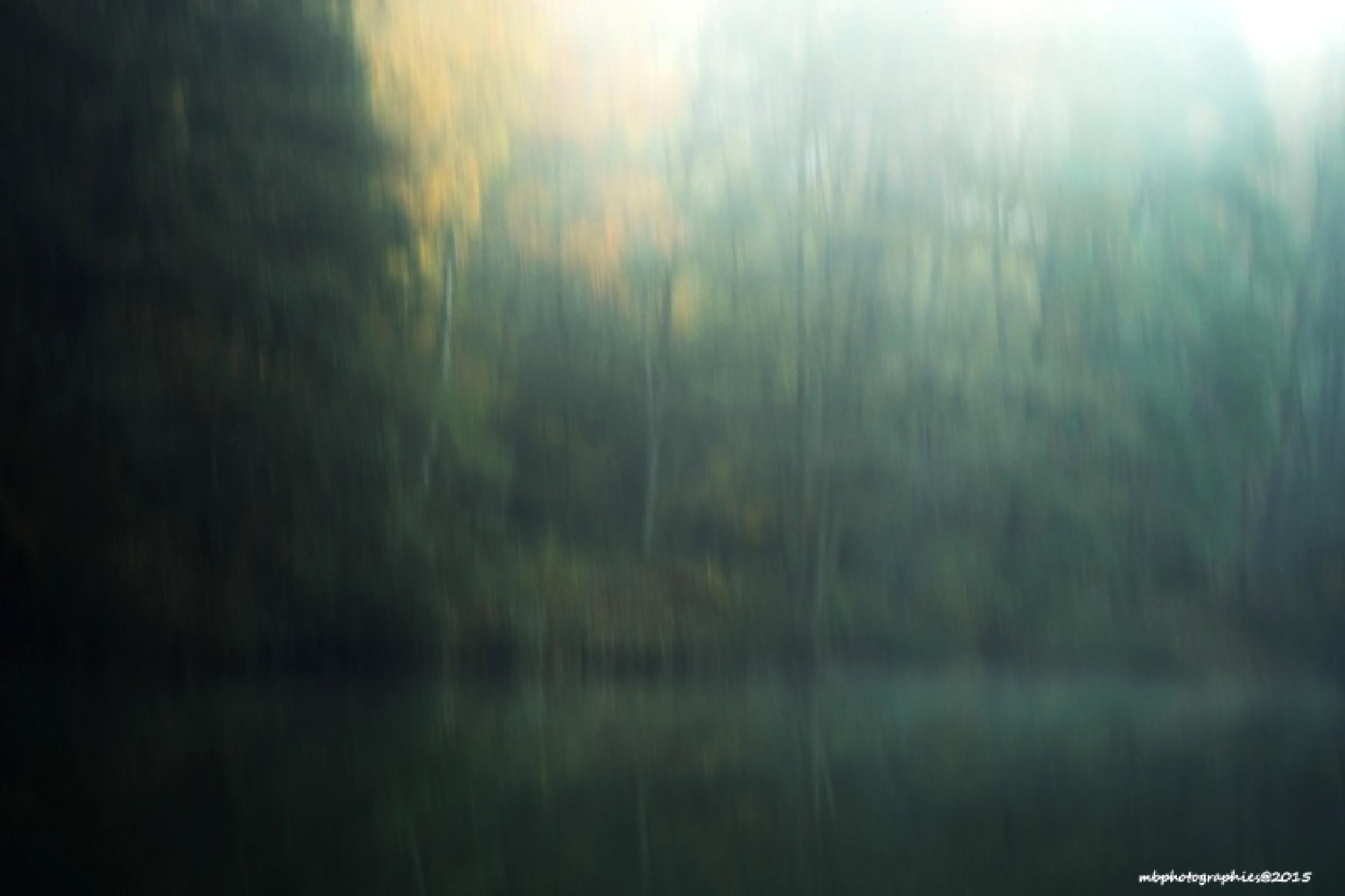 Lake by martineb57