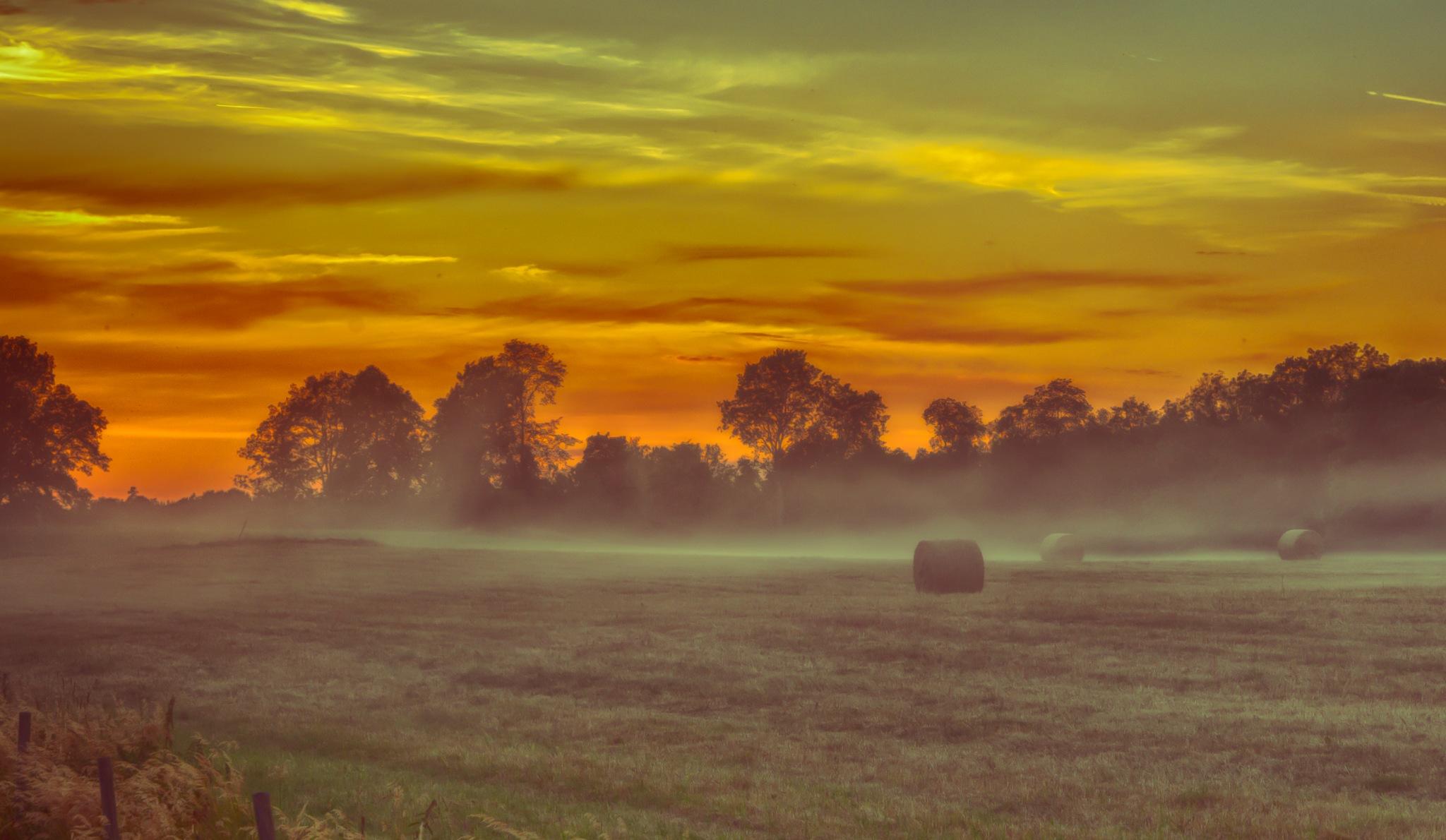 Hay in Mist at Sunset by carljan w carlsson