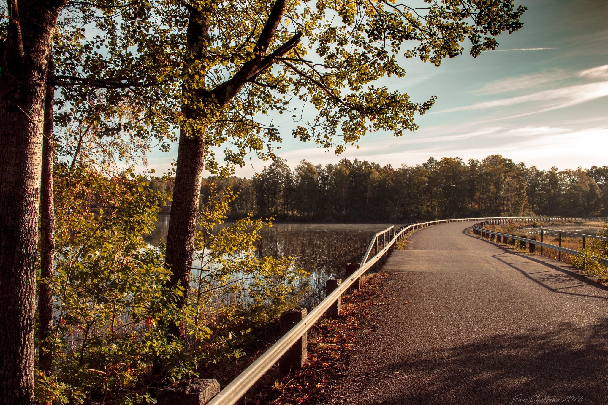 Morning at the Lake 1 by carljan w carlsson