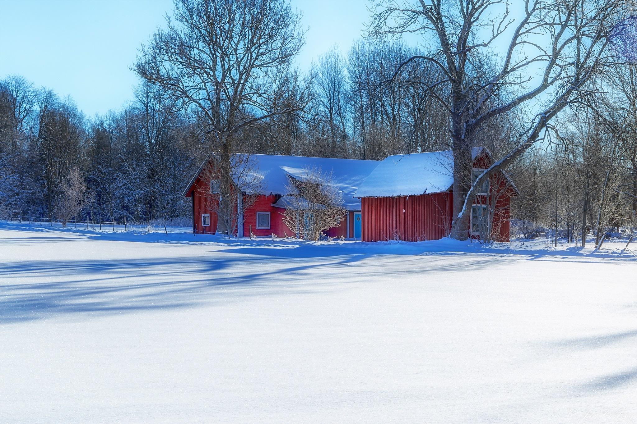 Winter - The Never Ending Story VIII by carljan w carlsson
