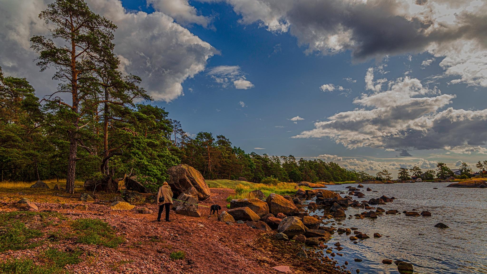 Autumn Walkie at the Swedish East-Coast by carljan w carlsson