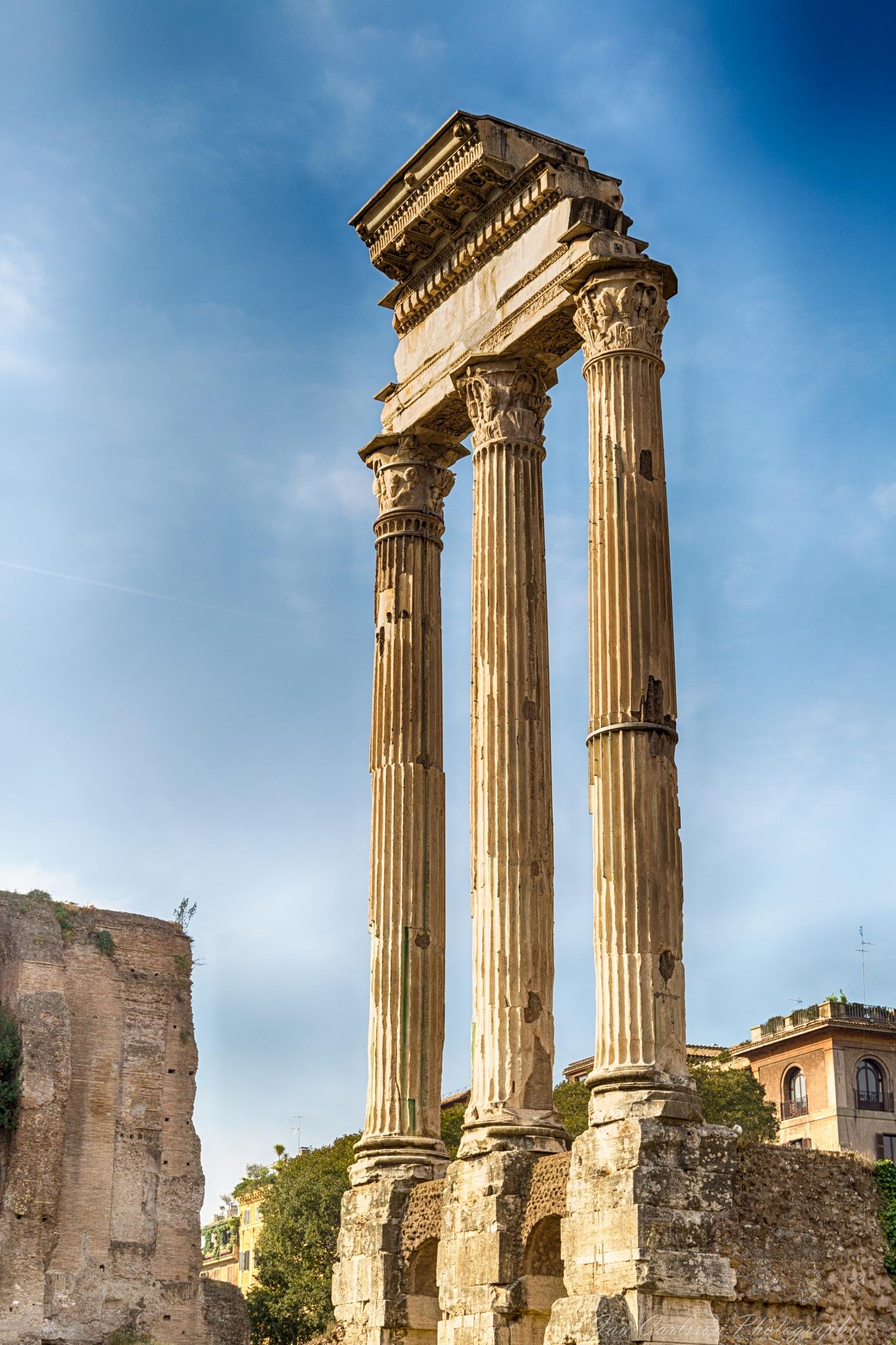 Ancient Rome Palatine Hill by carljan w carlsson