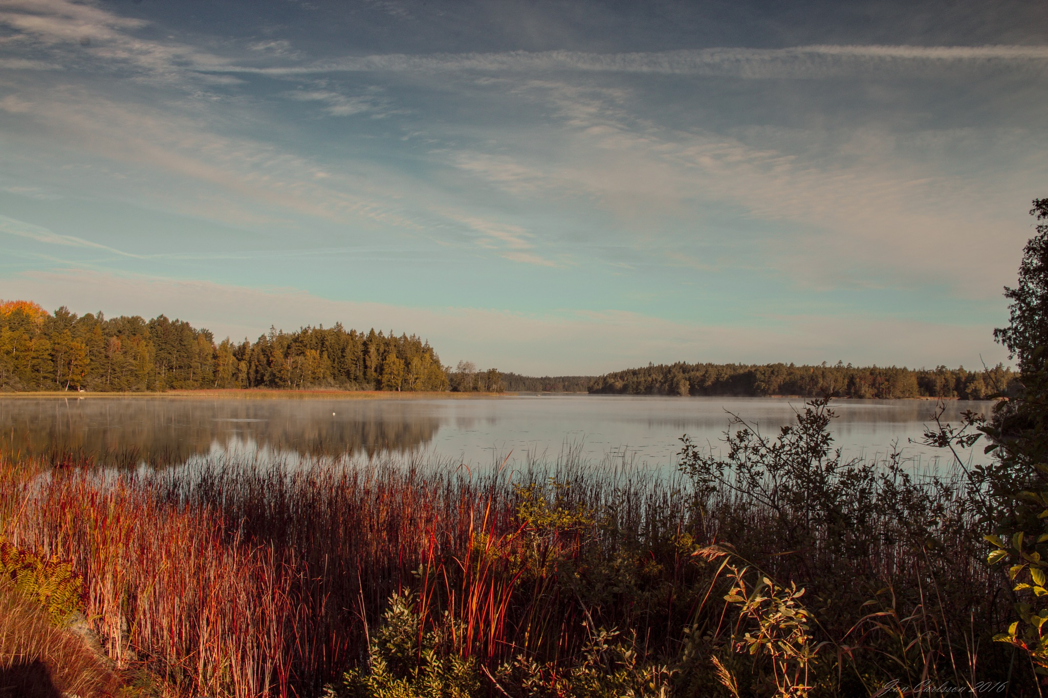 Morning at the Lake 3 by carljan w carlsson