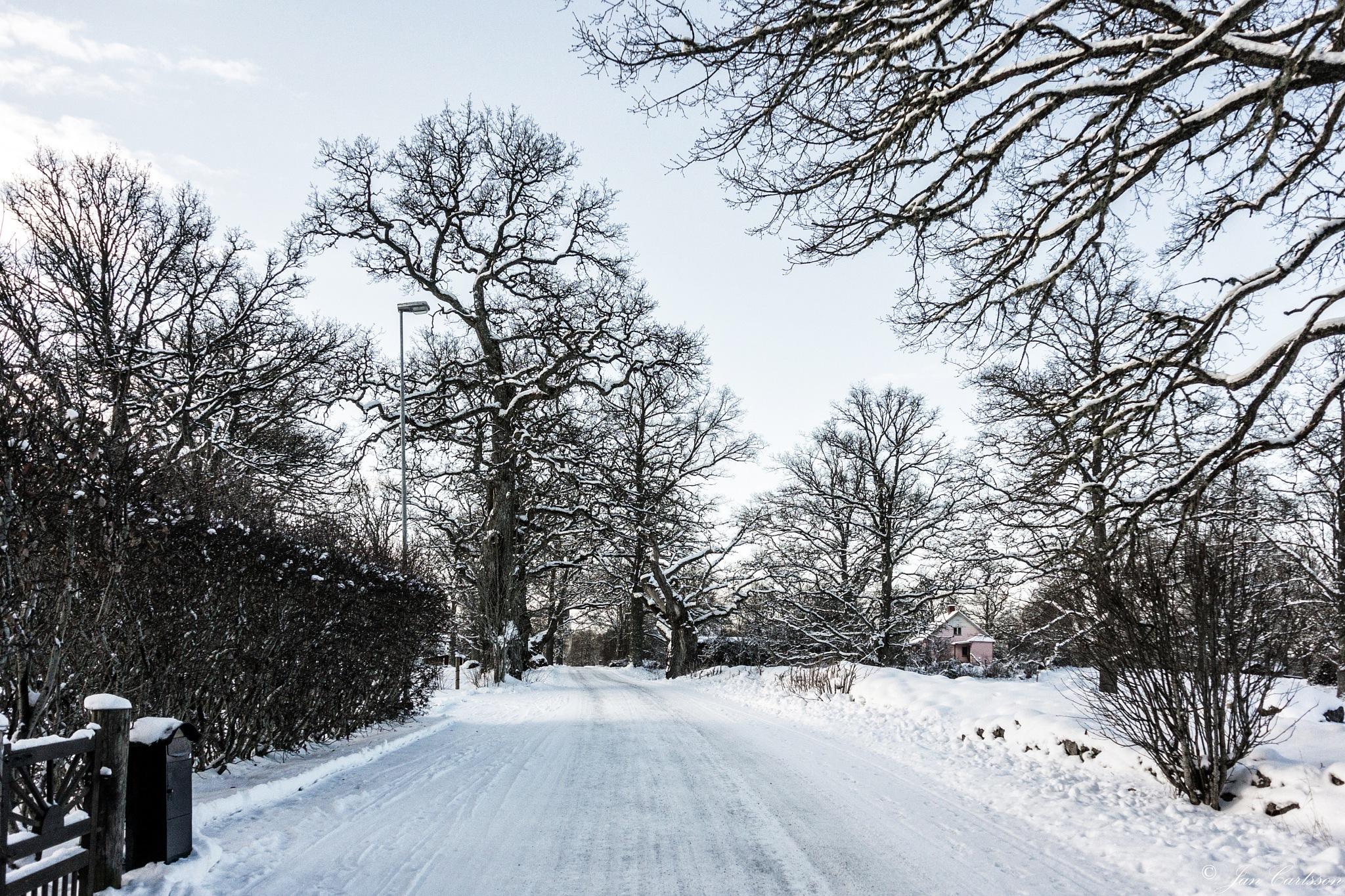 A Very Cold February Morning by carljan w carlsson