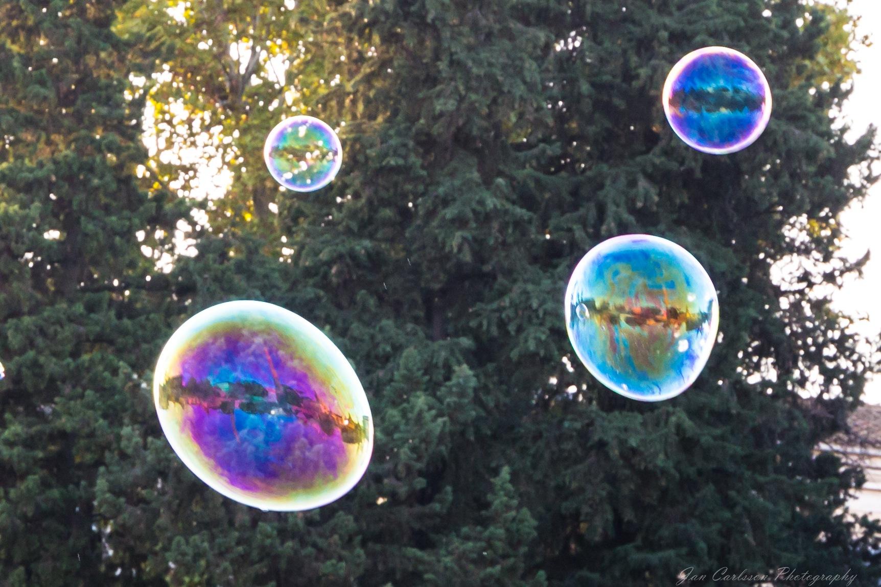 Rome in Bubbles by carljan w carlsson