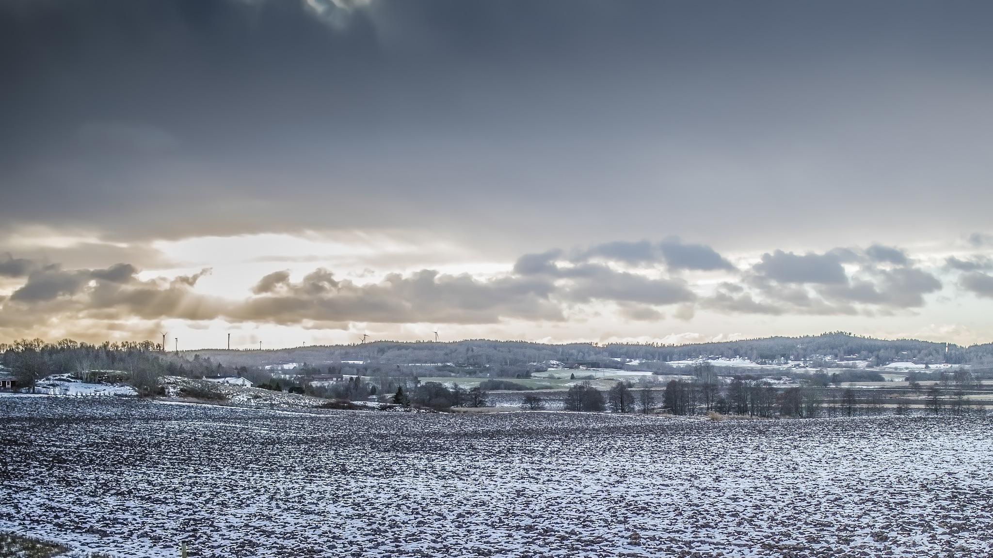 The Very First Snow by carljan w carlsson