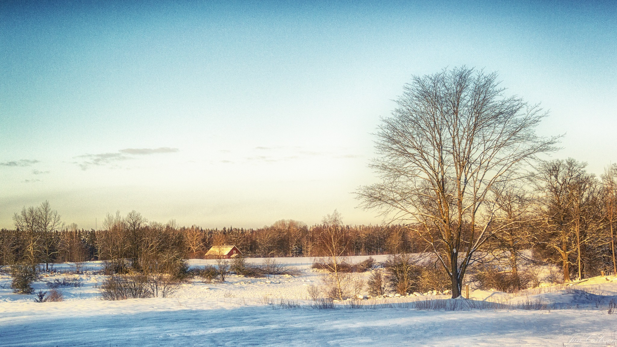 A Very Cold February Morning in the Middle of Nowhere by carljan w carlsson