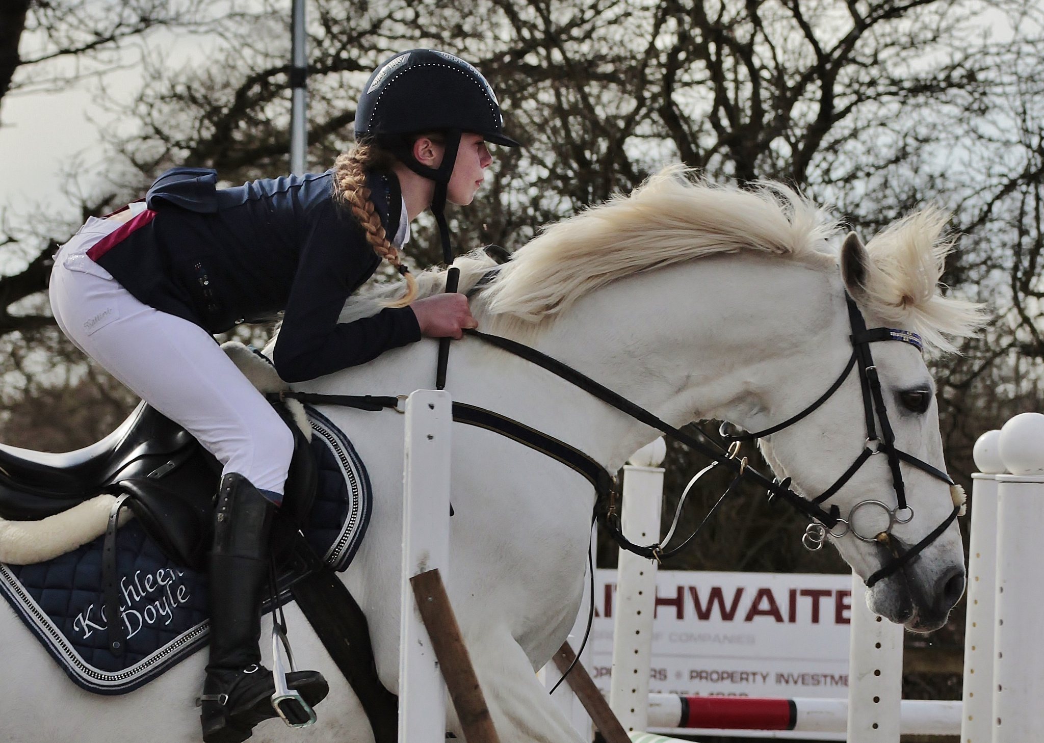 Show Jumping  by Hughrowlands