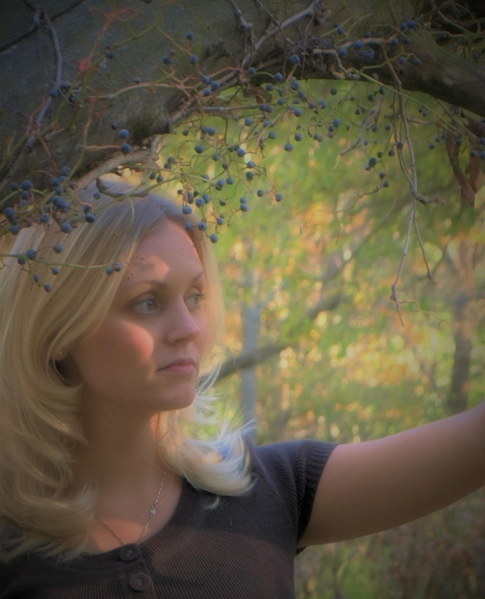 In the Woods by photofly/Holly