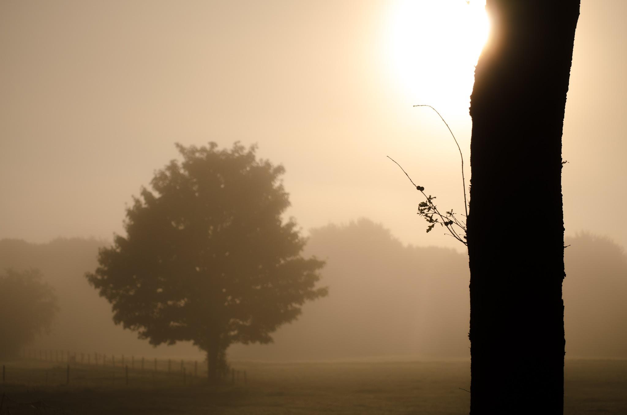 Sunrise over Sleen by Gerard de Haan