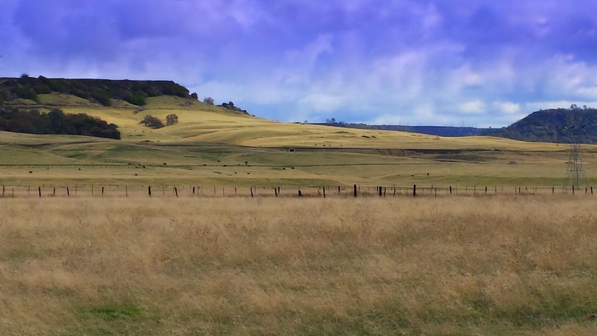 Oroville fields by connie