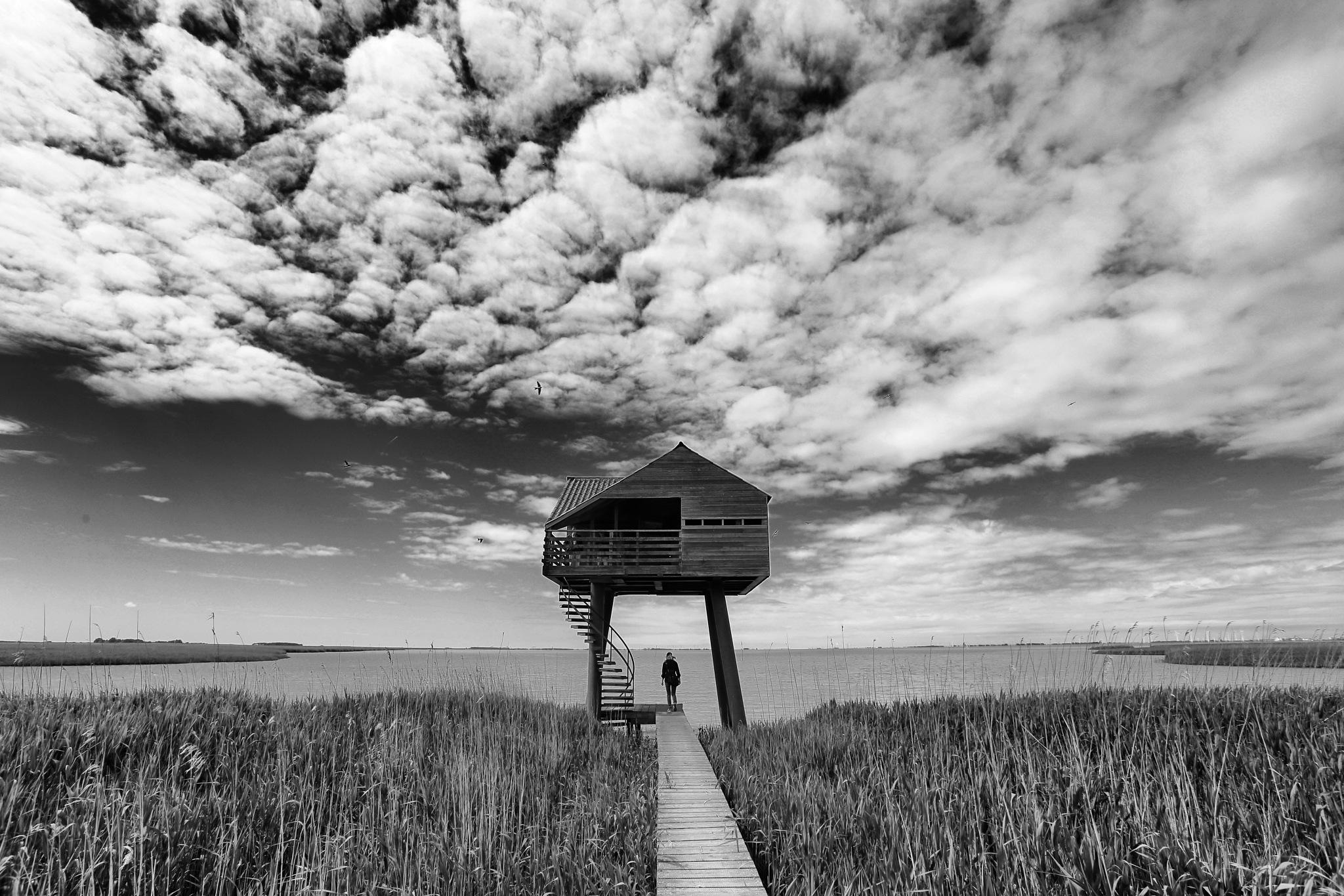 Kiekkast by Sjoerd Weiland