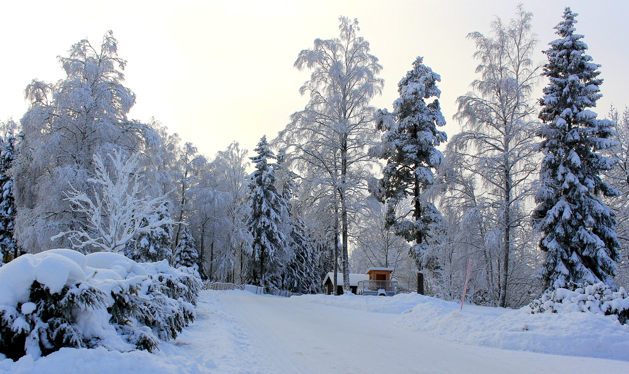 Winterwonderland by susannemkarlsson