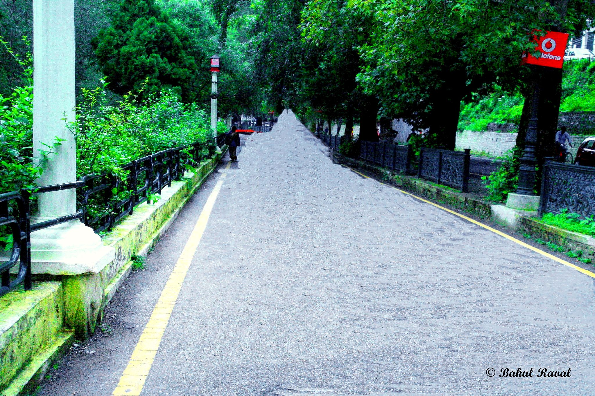 Lone pathway ... by bakulraval