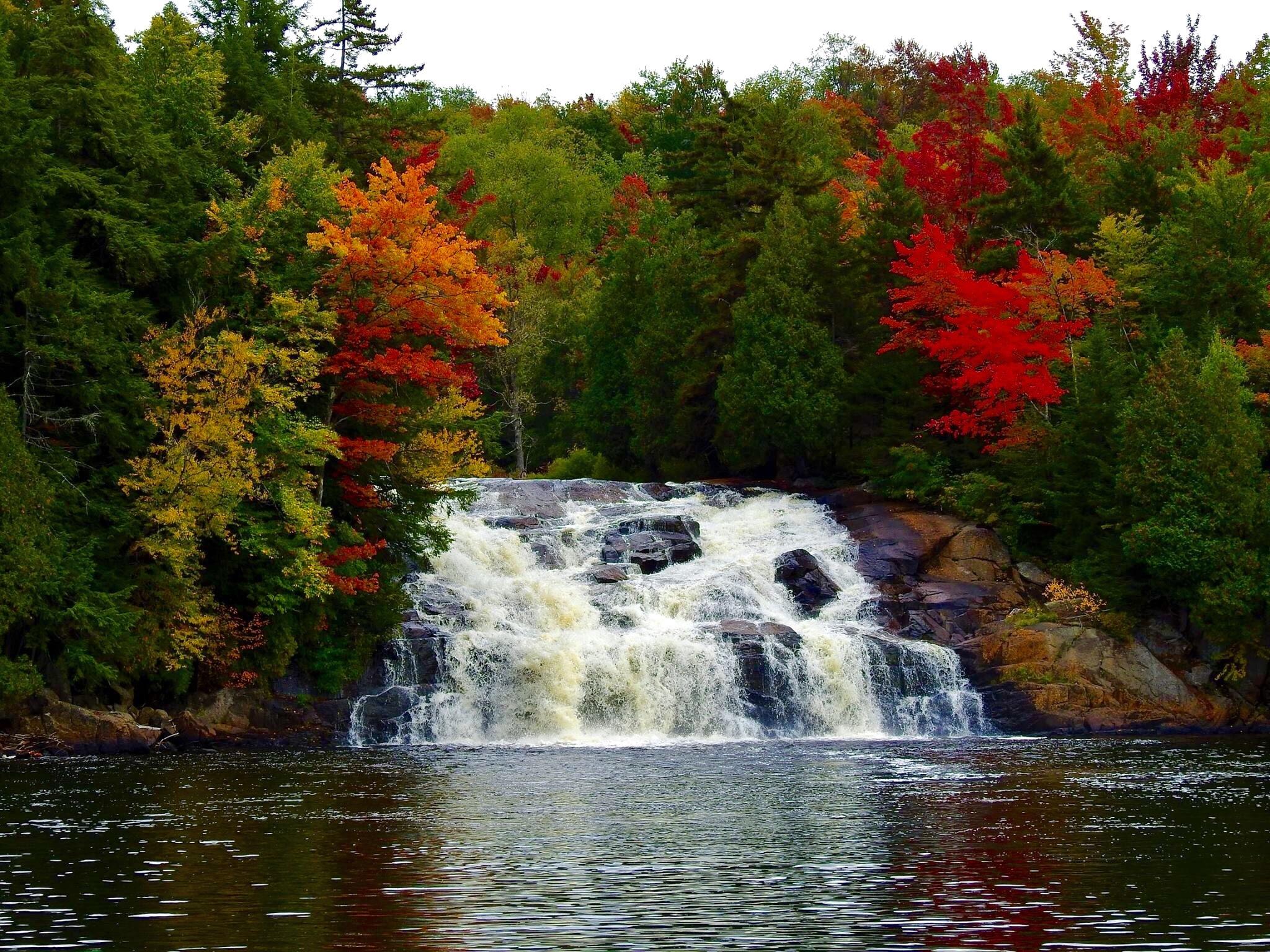 Autumn splendor by Brian McElwain