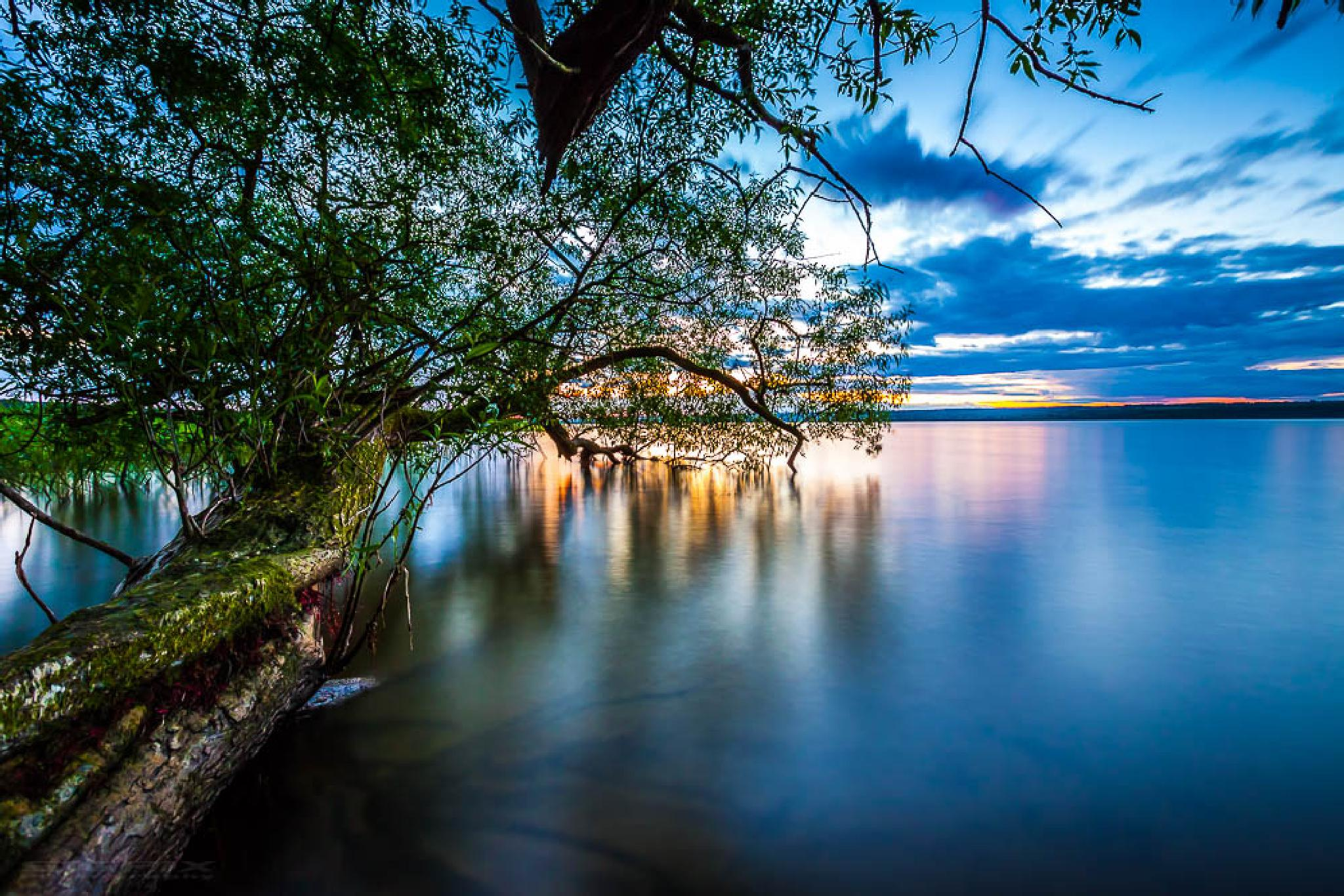 Calm lake. by Bengt Sigeholt Photography