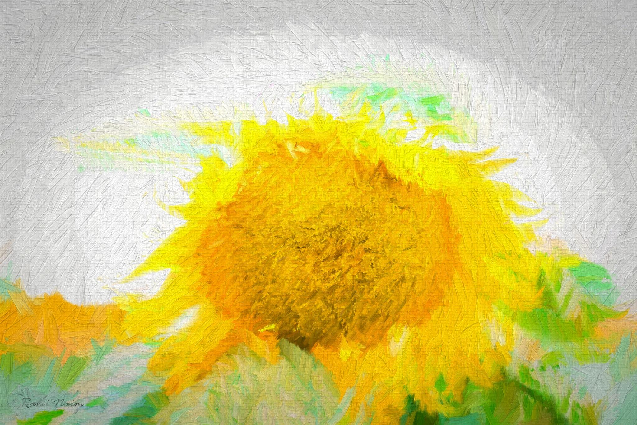 sun by raminaim
