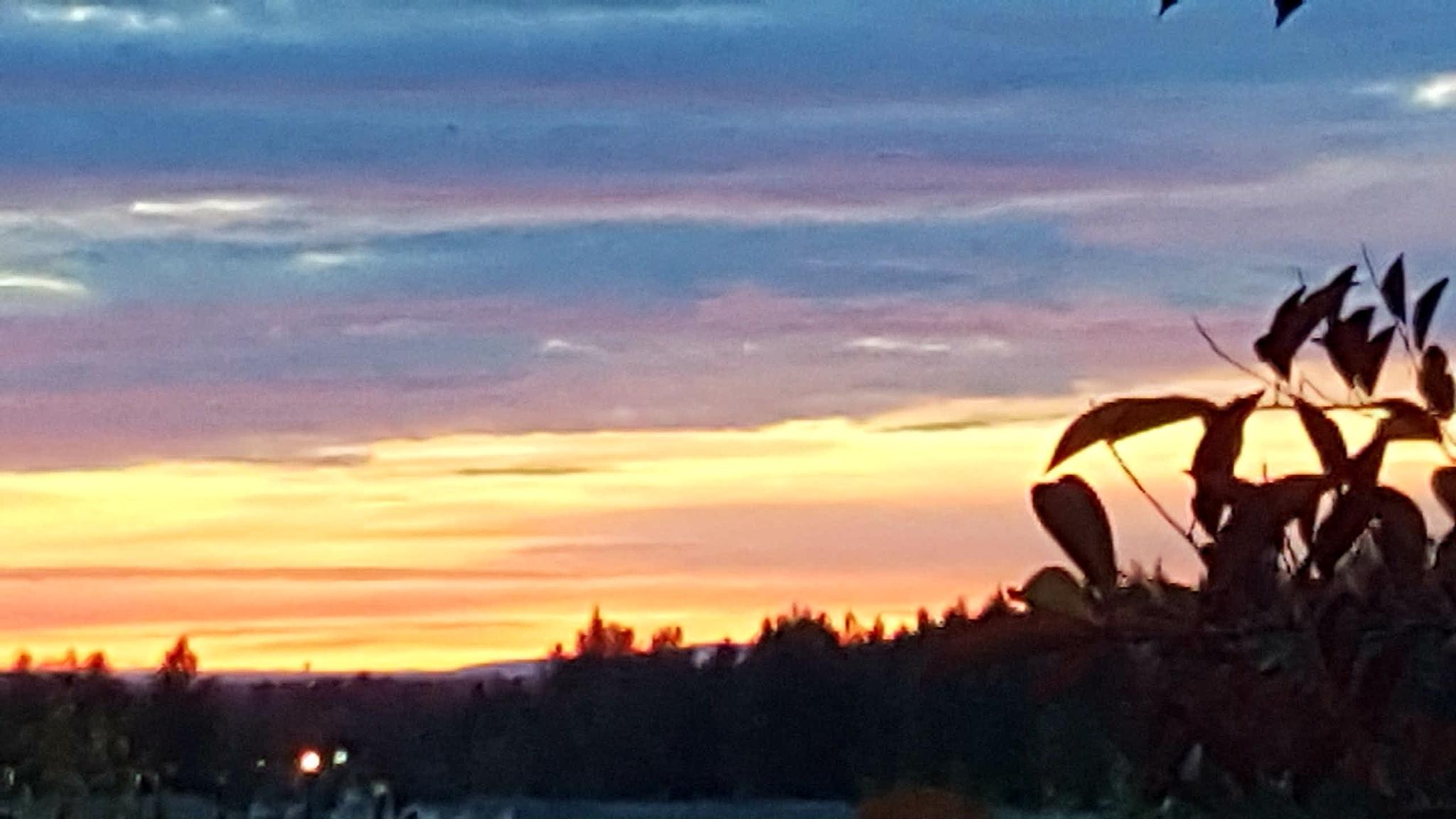 12:55 am in Anchorage, Alaska! by teresa.thiele1
