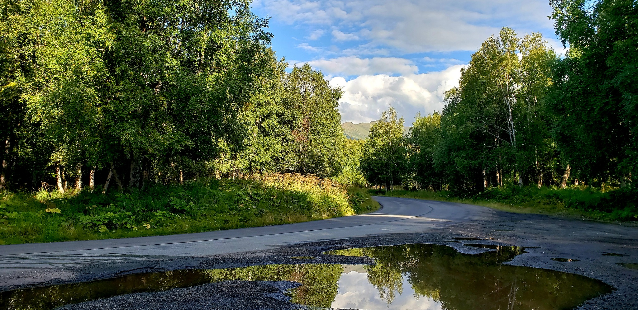 Roadside Reflections... by teresa.thiele1