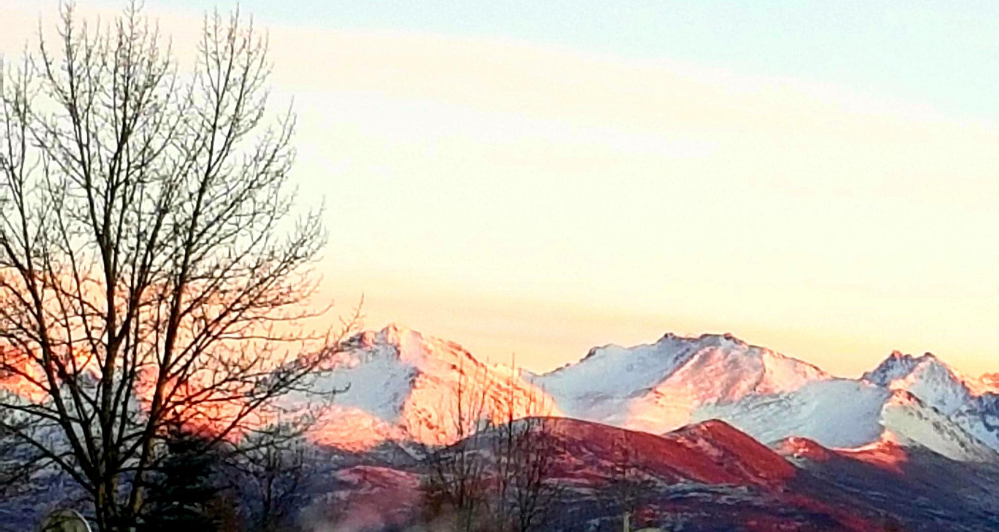 Chugach Alpenglow  by teresa.thiele1