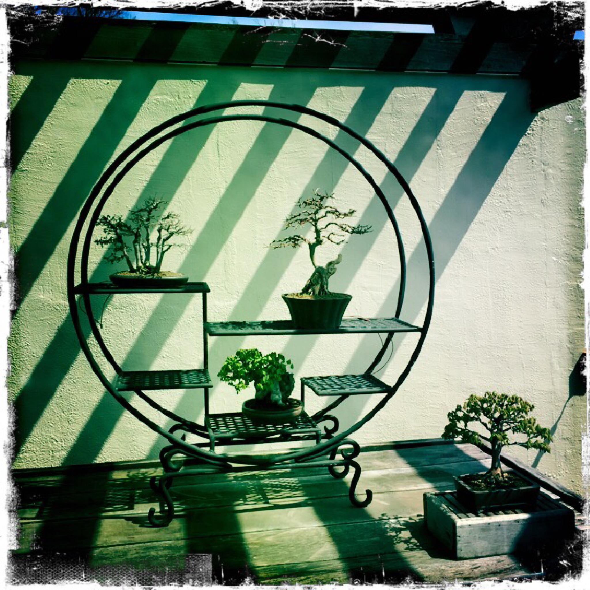 bonsai geometry by Copperrock