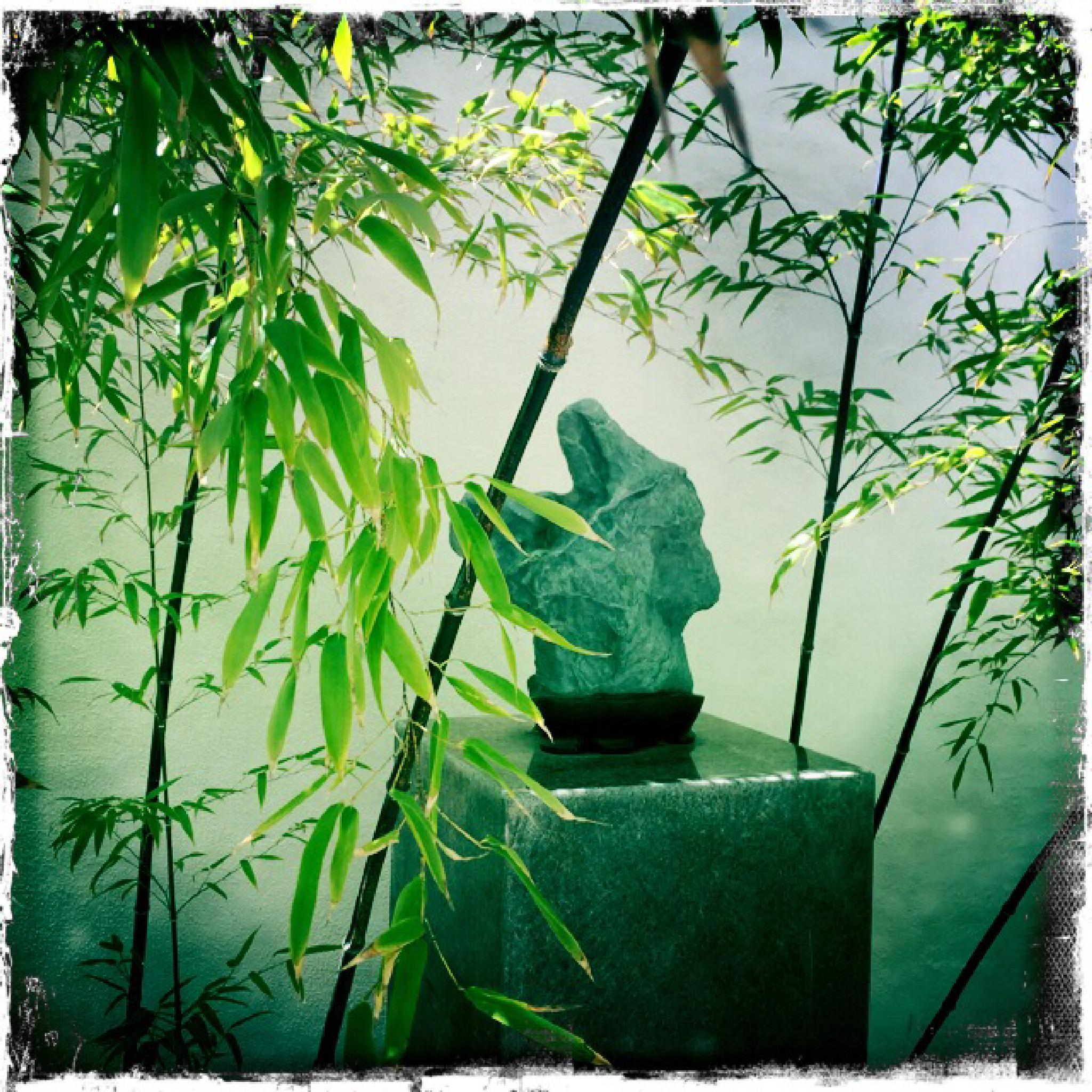Bamboo Who..? by Copperrock