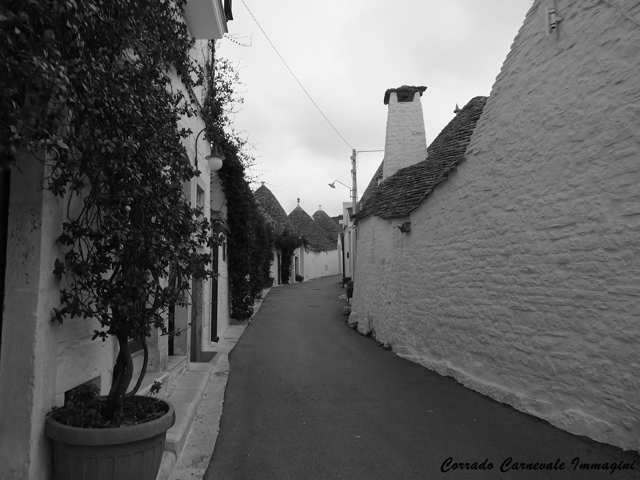 Untitled by corrado carnevale