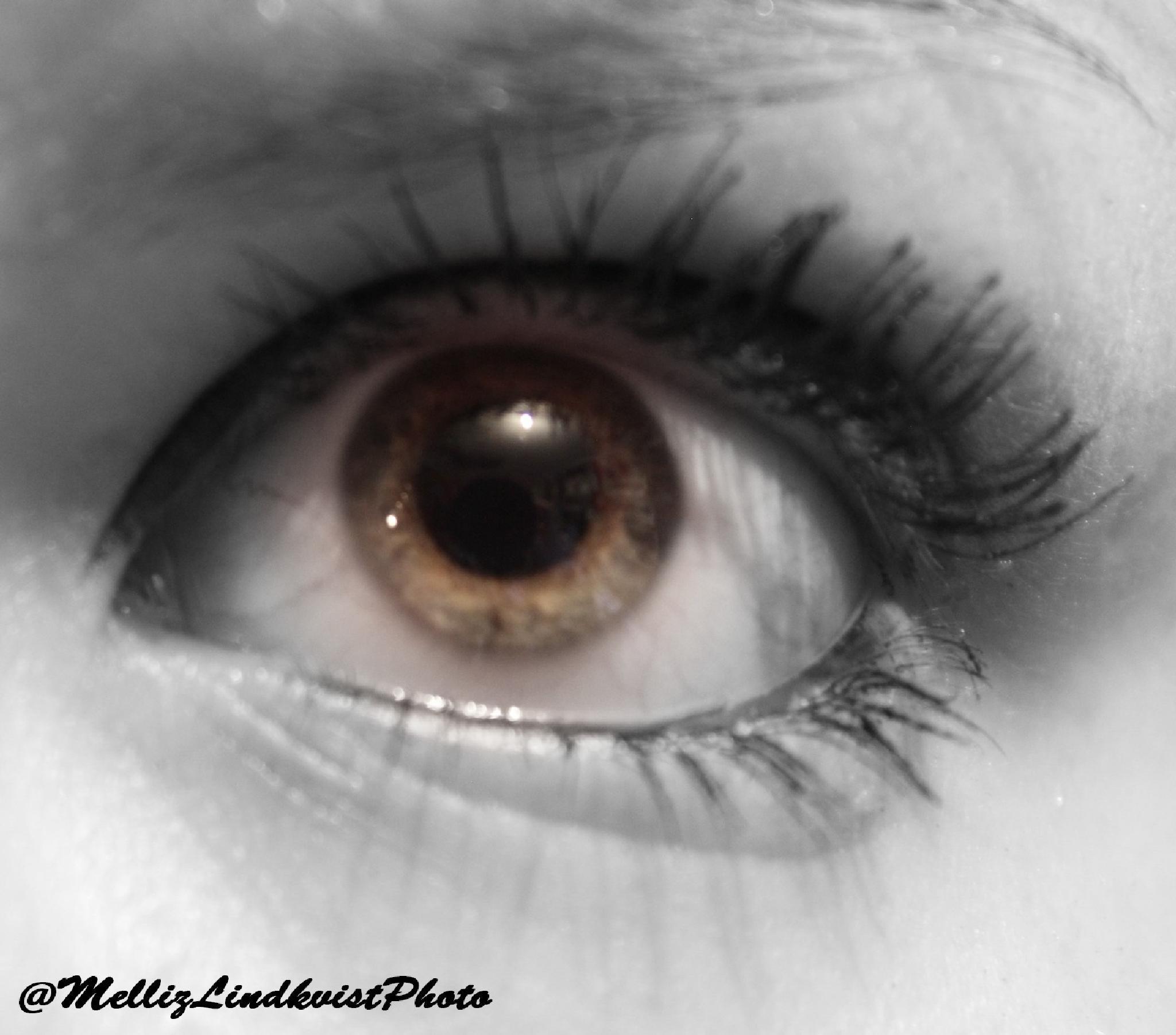 Photo in Black and White #eye #myeye #greeneye #face #selfie #eyeselfie #blackandwhite