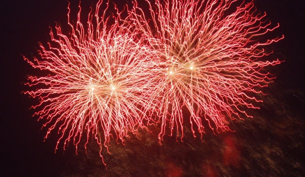 Firework by adriaan.boender