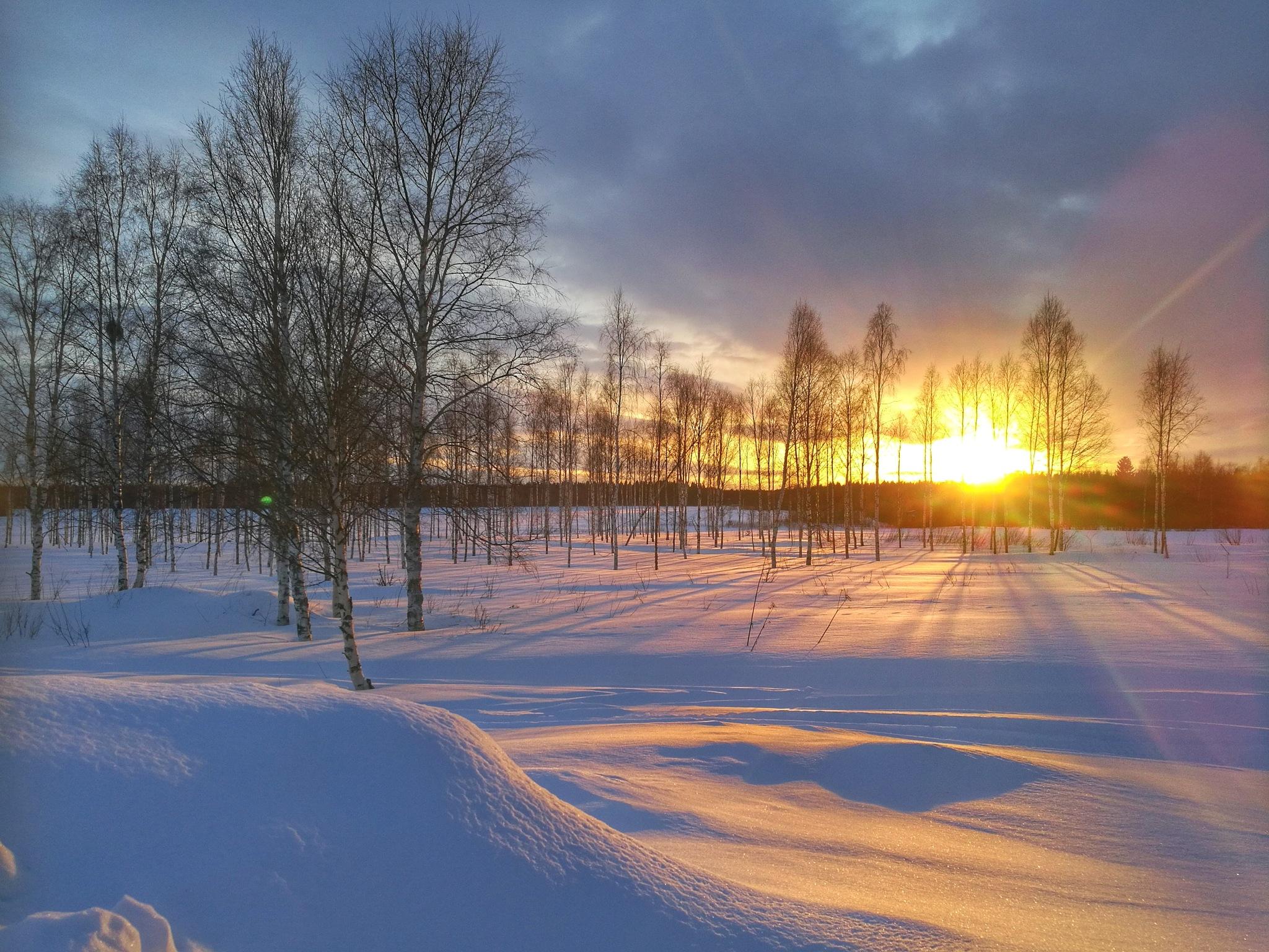 Beautiful winterday by carro