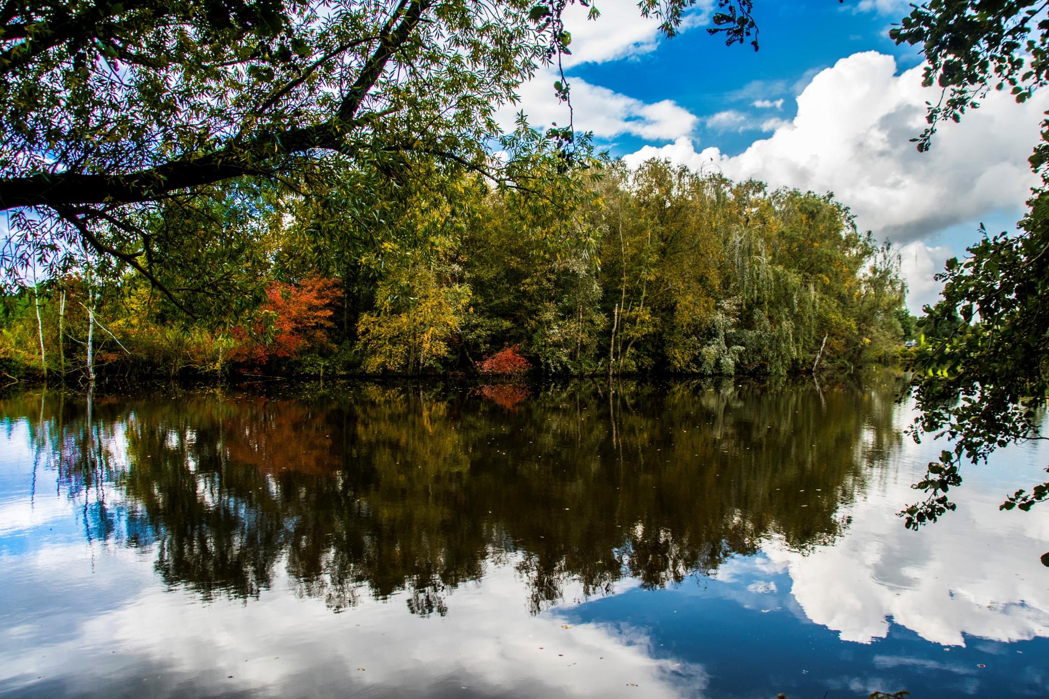 Autumn colours by San Zijlstra