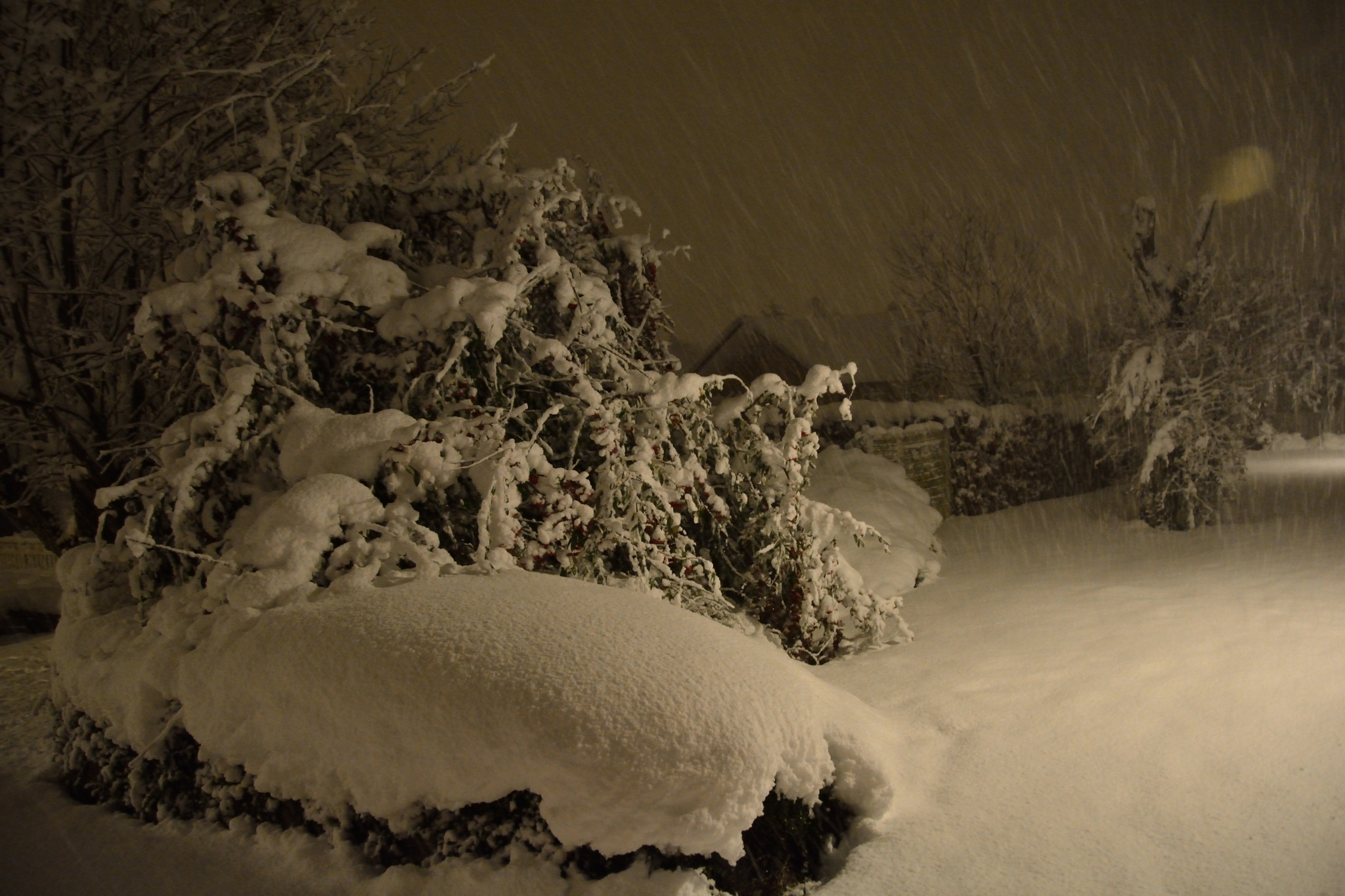 Night in snow by Kenneth H. Petersen