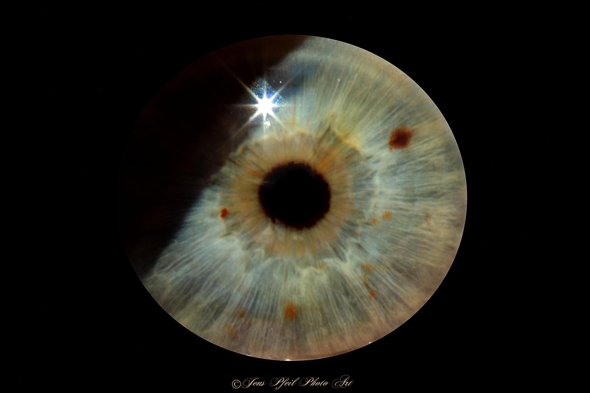 Eye-Eclipse... by papaje