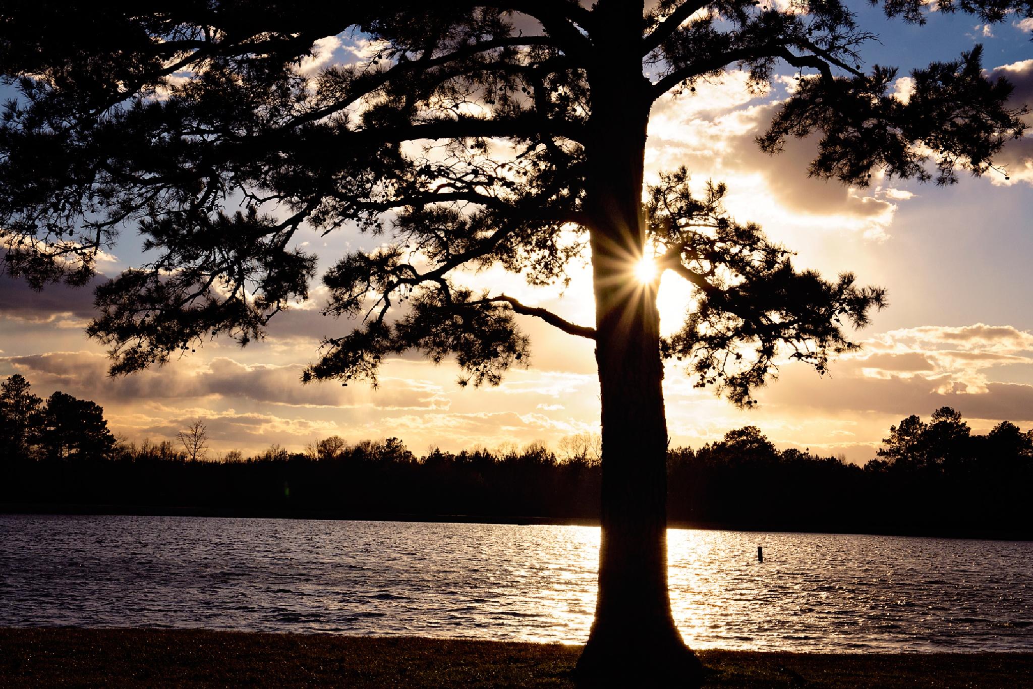 Lake Mike Conner, MS by jennifer.byrd.1238
