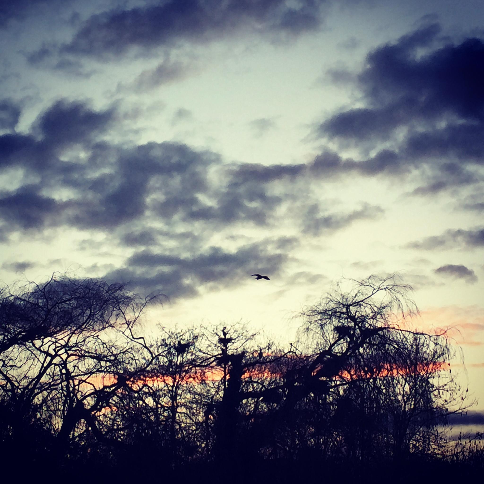 Sun down by Borg de Nobel