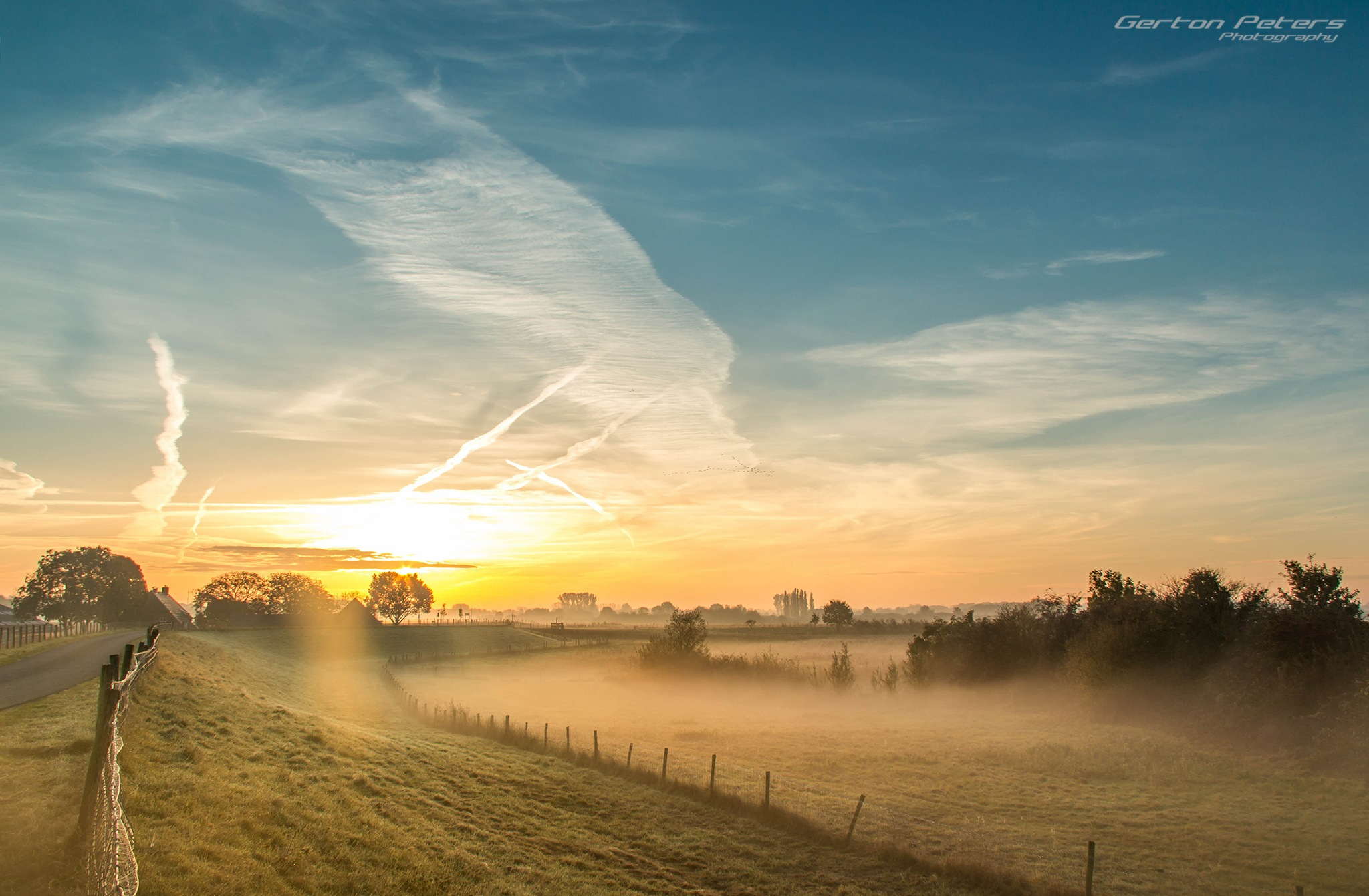 Morning glory by Gerton Peters